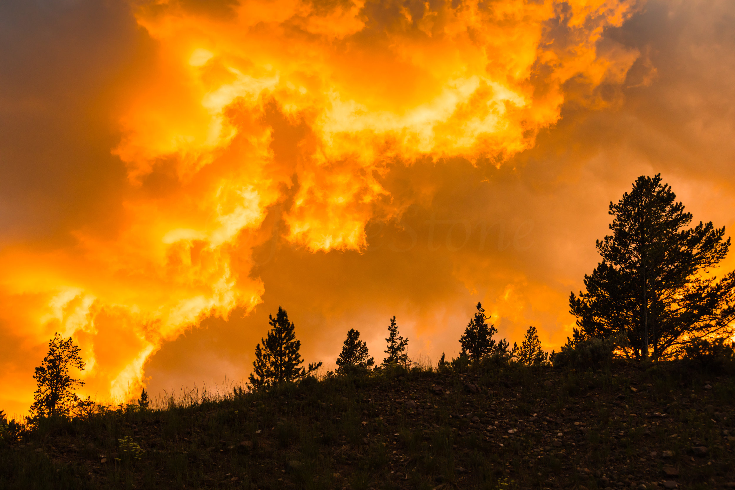 Lamar Valley Sunset, Yellowstone National Park, Image # 6047