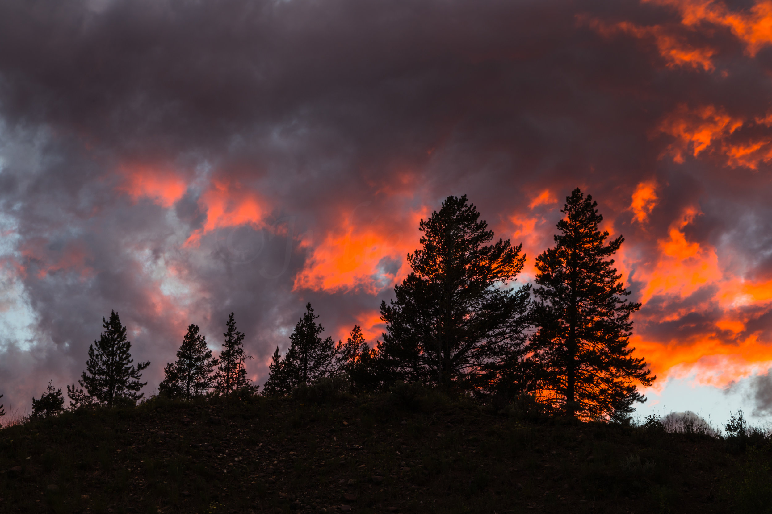 Lamar Valley Sunset, Yellowstone National Park, Image # 6091