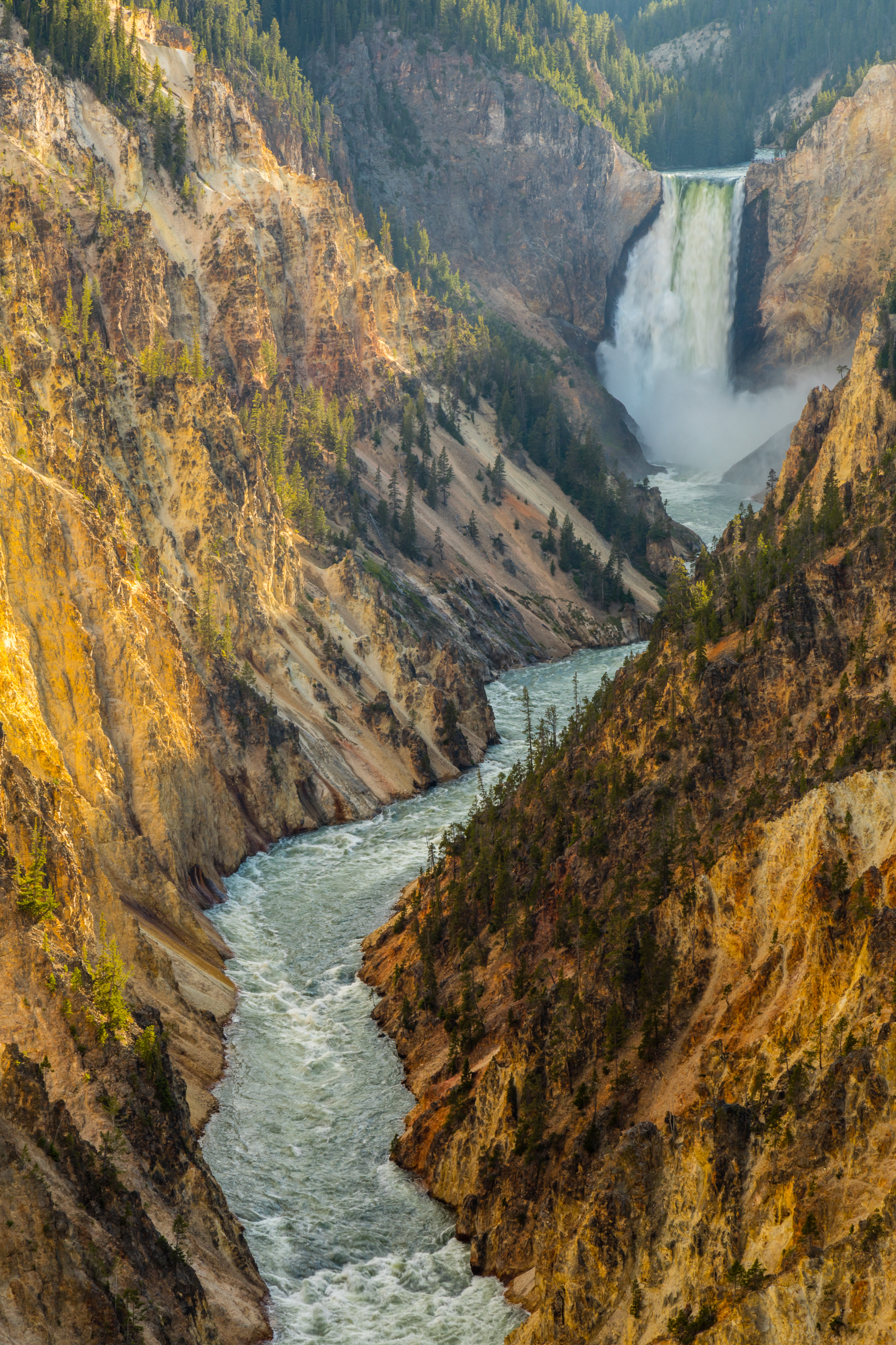 Artist Point, Yellowstone National Park, Image # 5825