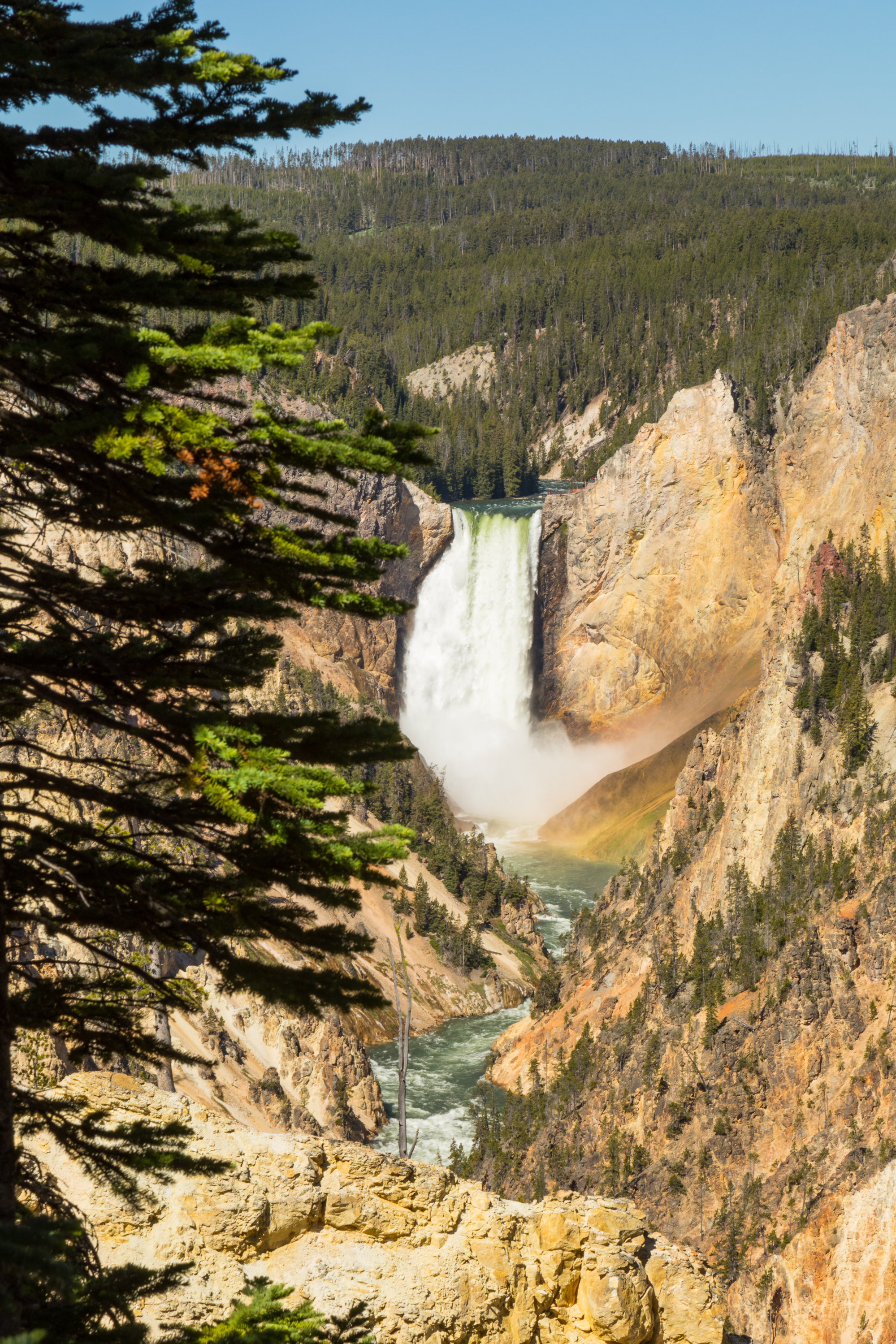 Artist Point, Yellowstone National Park, Image # 7073
