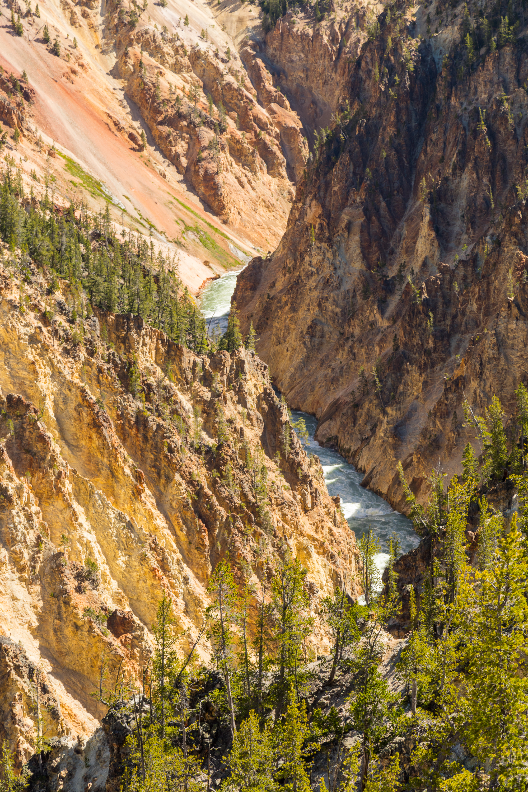 Artist Point, Yellowstone National Park, Image # 7082