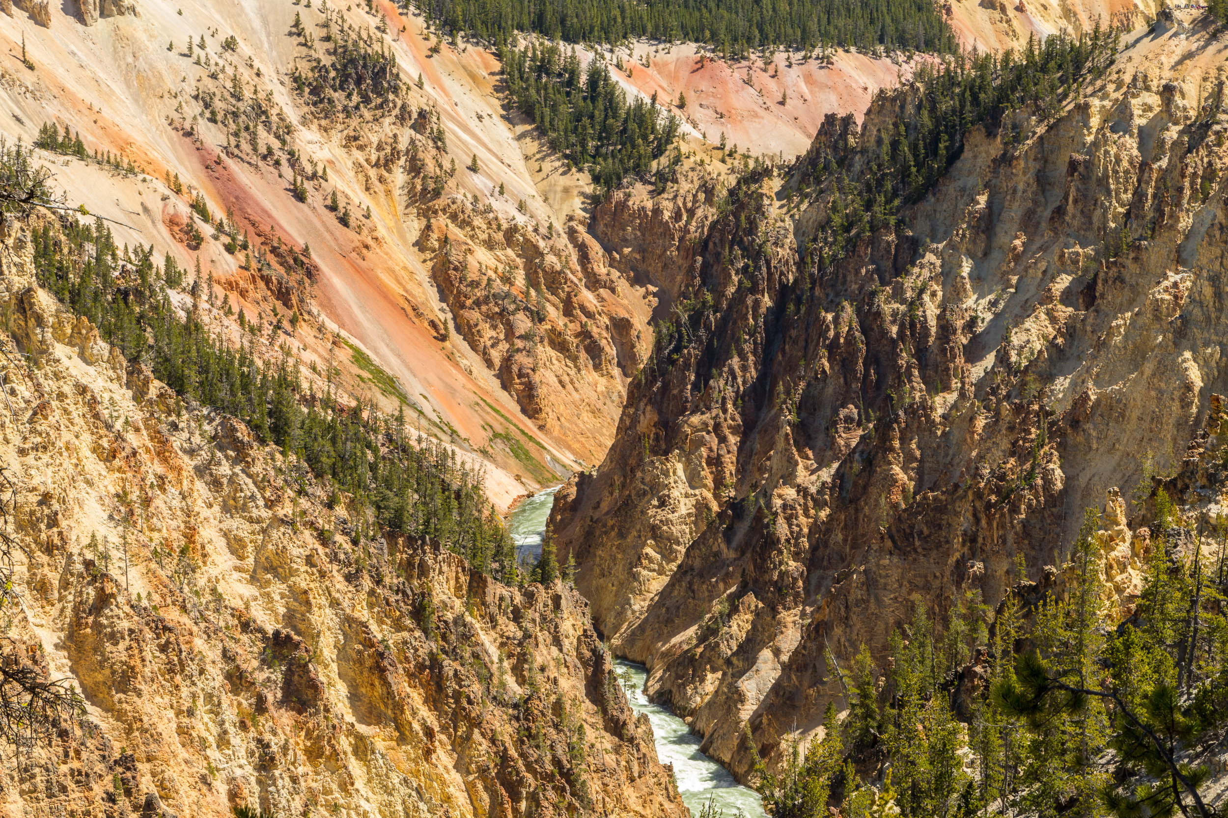 Artist Point, Yellowstone National Park, Image # 7153