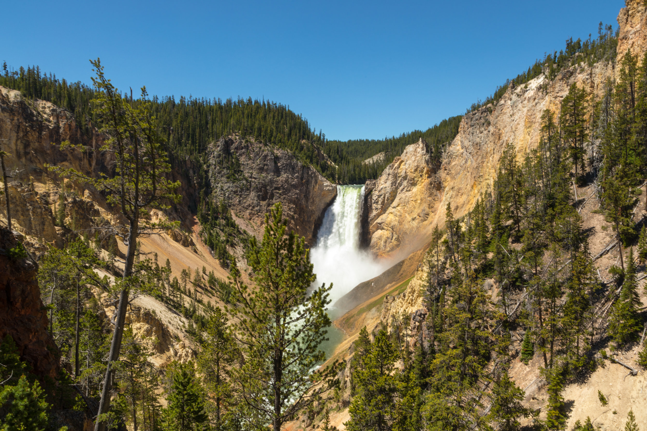 Artist Point, Yellowstone National Park, Image # 7222