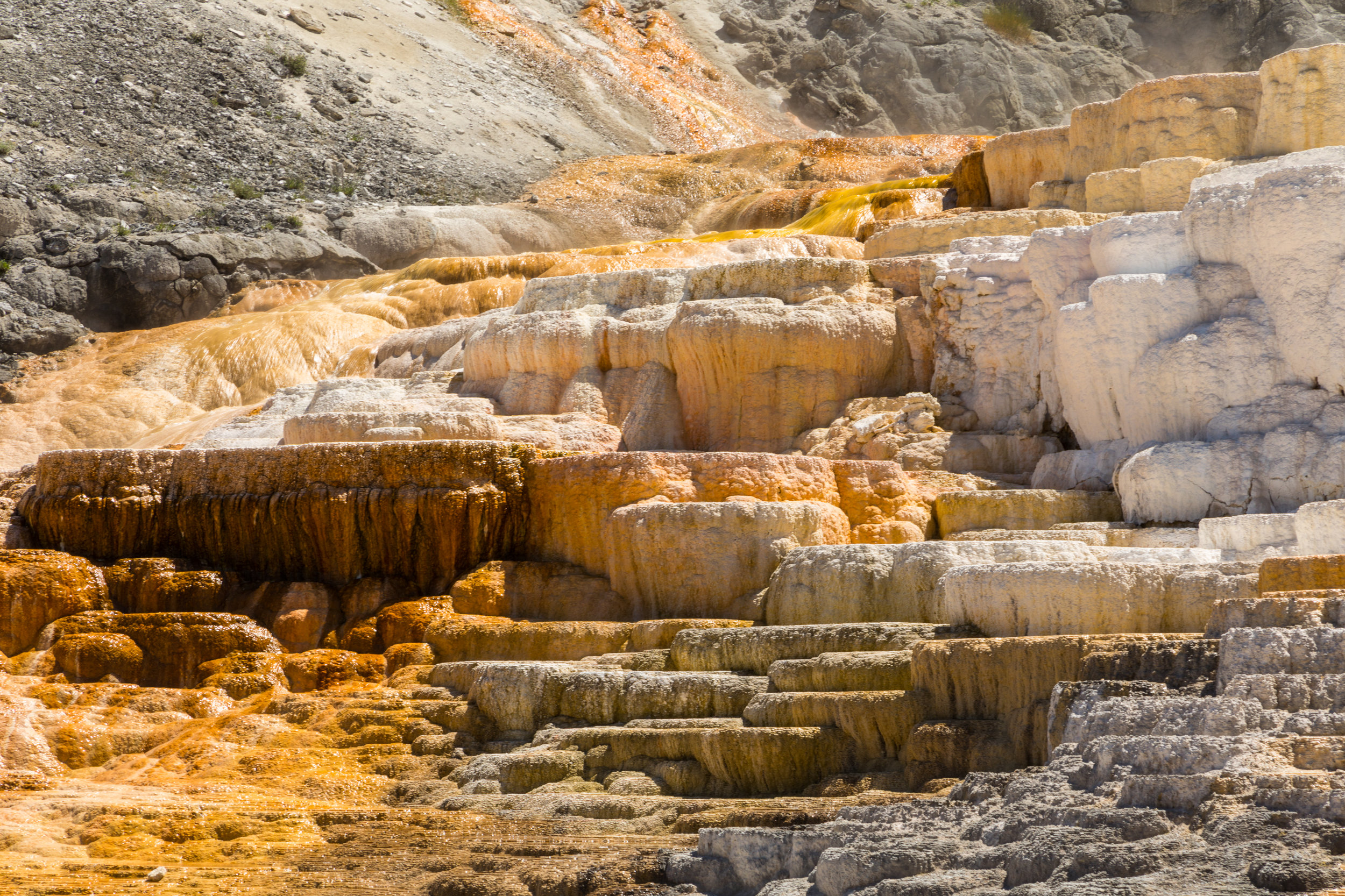 Mammoth Hot Springs, Yellowstone National Park, Image # 7308