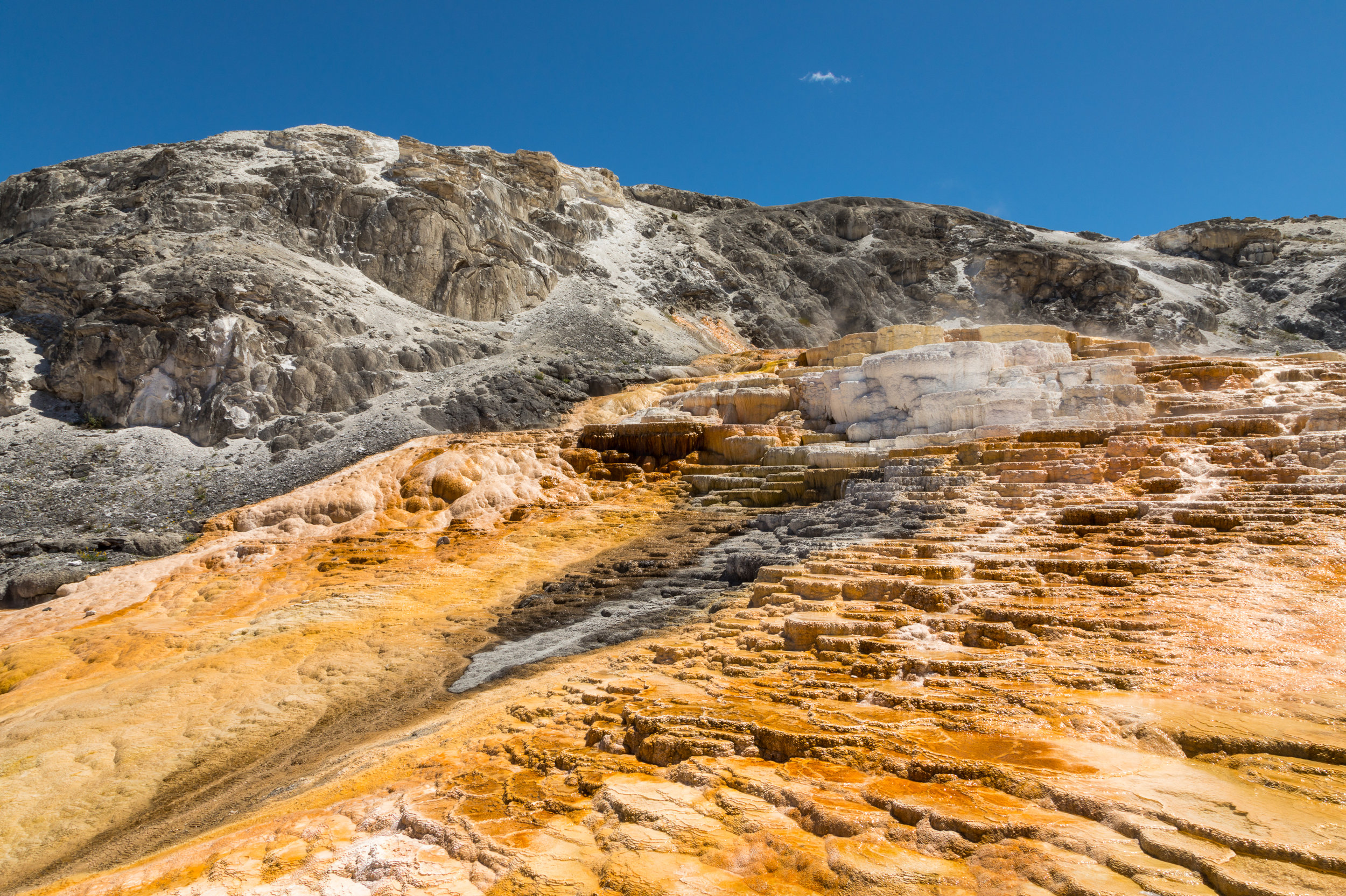 Mammoth Hot Springs, Yellowstone National Park, Image # 7306