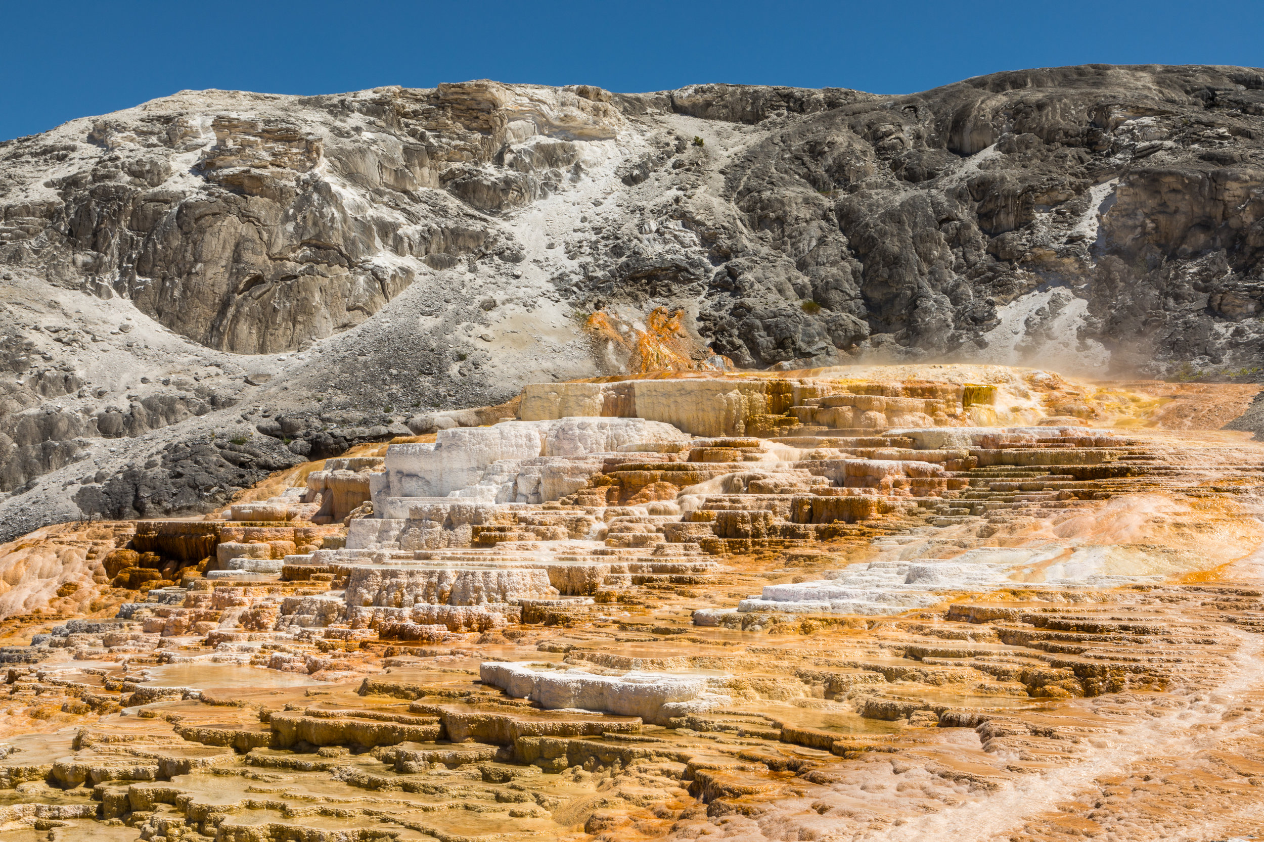 Mammoth Hot Springs, Yellowstone National Park, Image # 7319