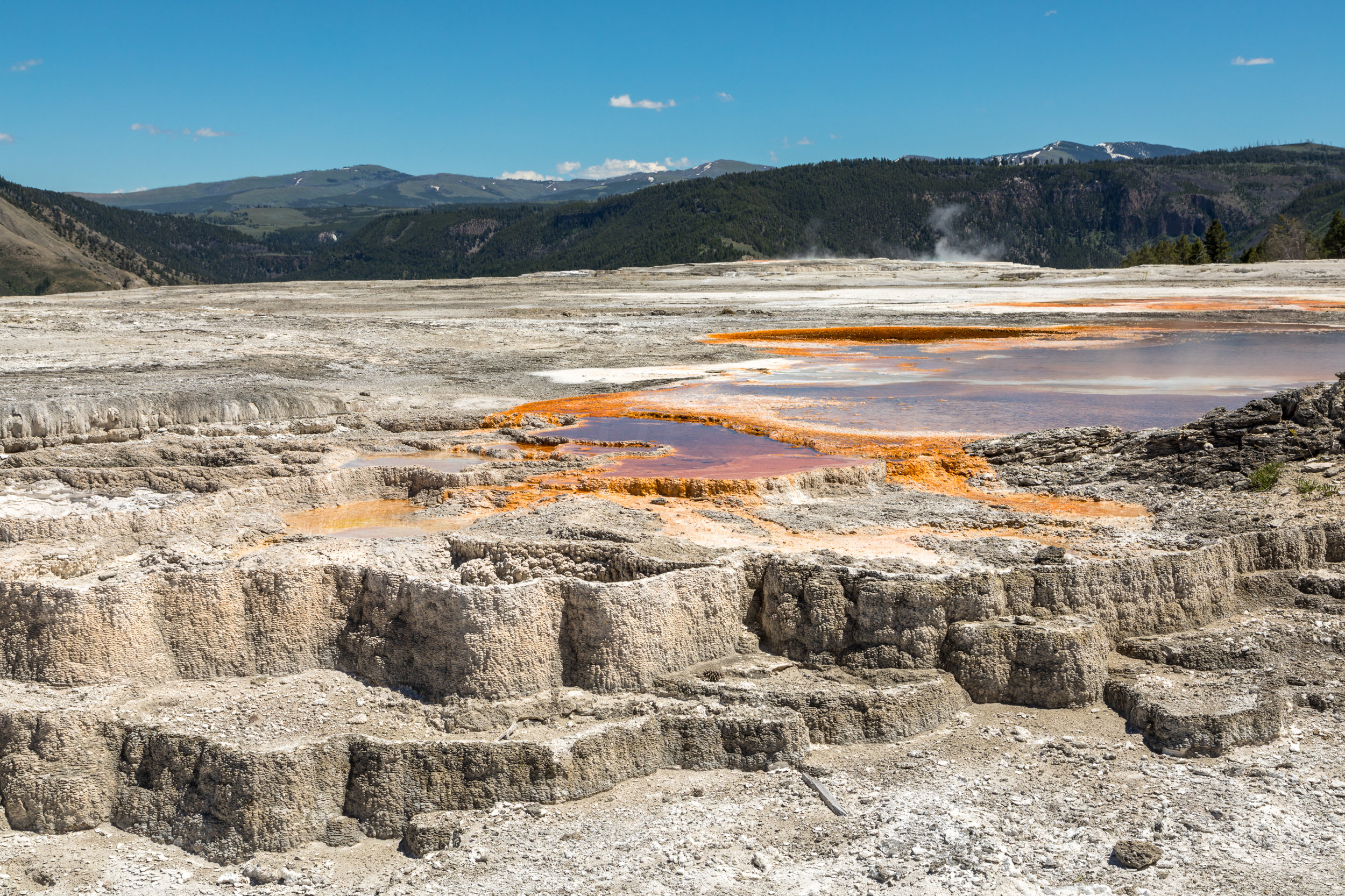 Mammoth Hot Springs, Yellowstone National Park, Image # 7323