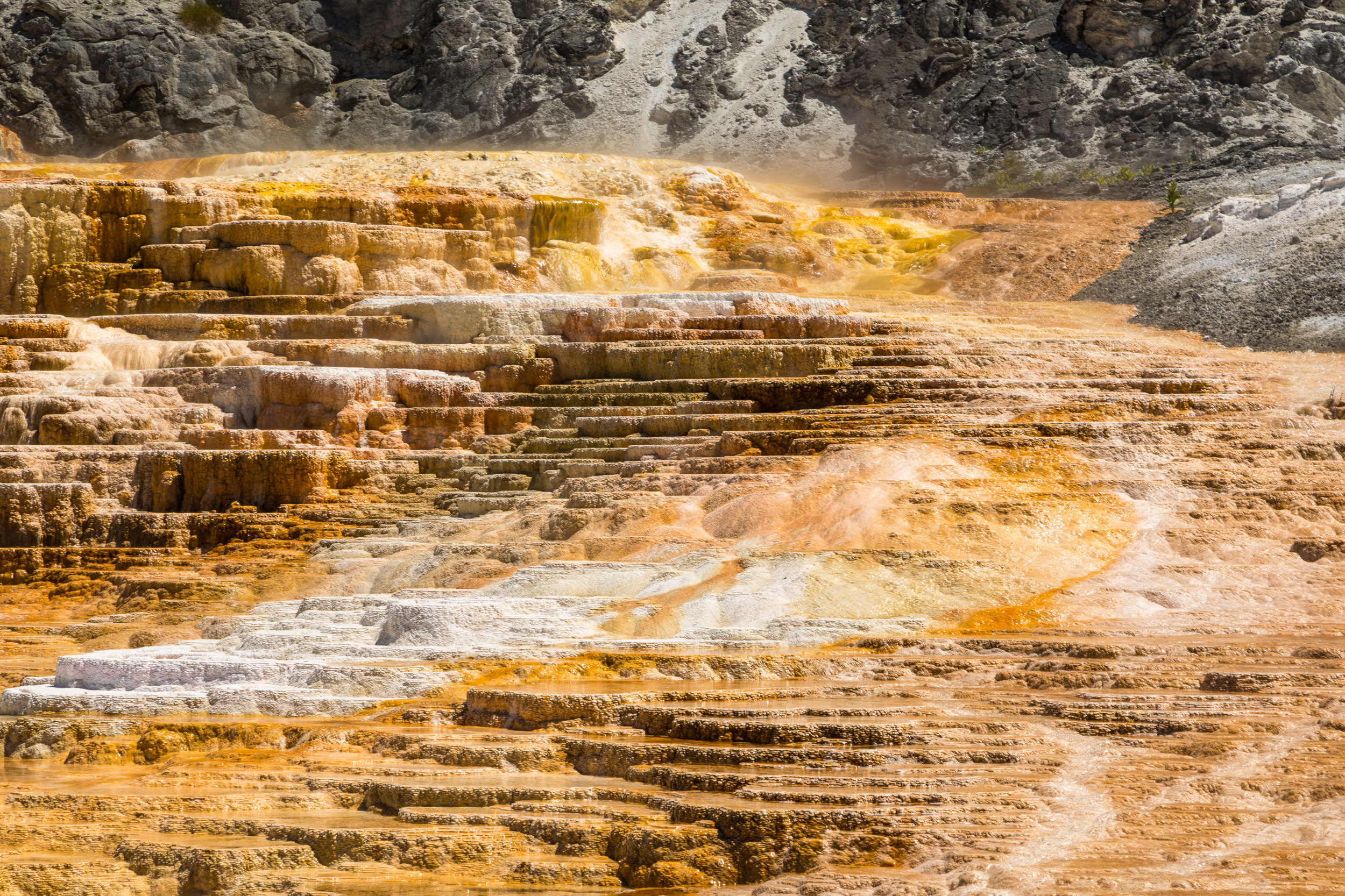 Mammoth Hot Springs, Yellowstone National Park, Image # 7321