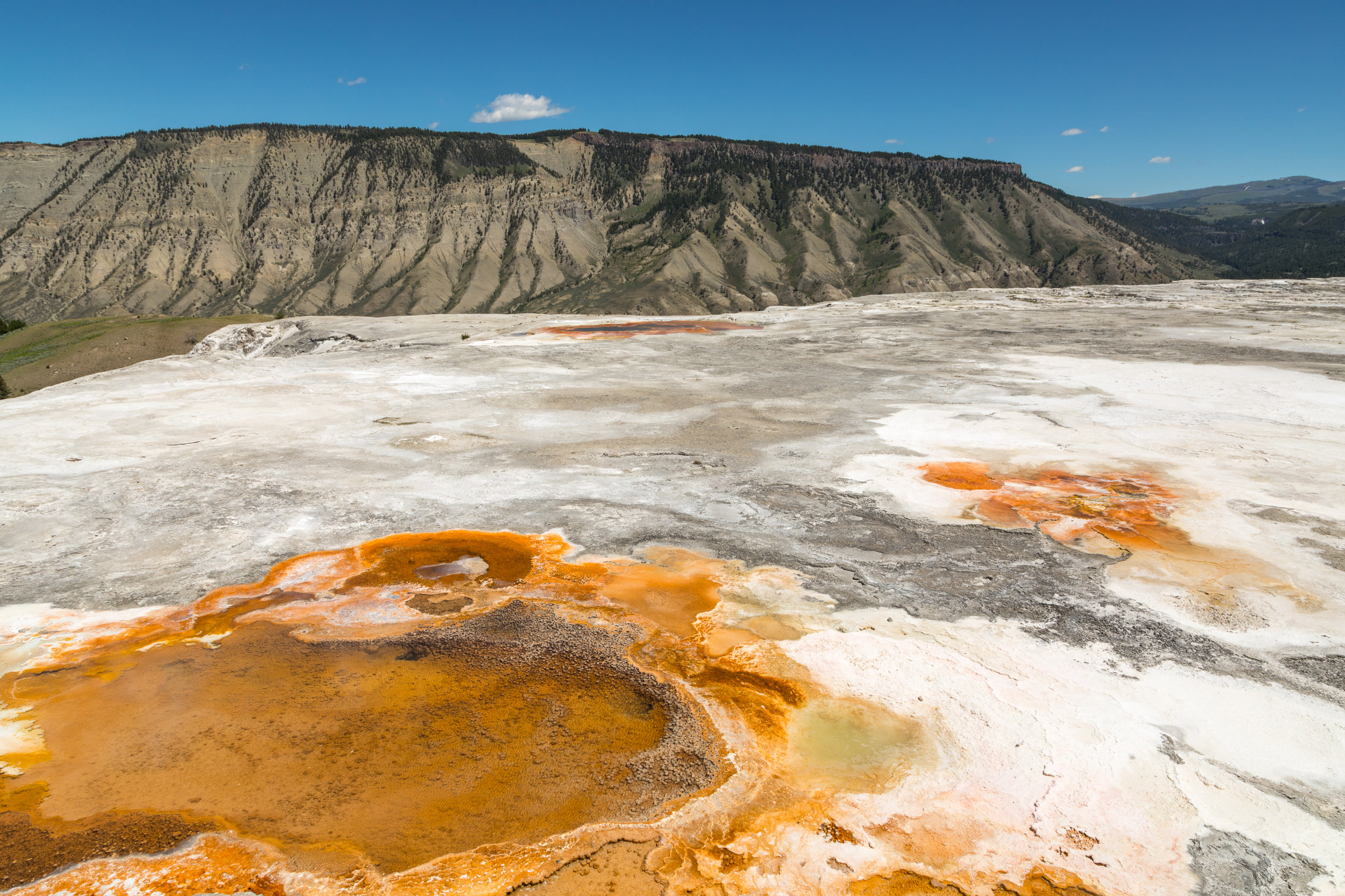 Mammoth Hot Springs, Yellowstone National Park, Image # 7325