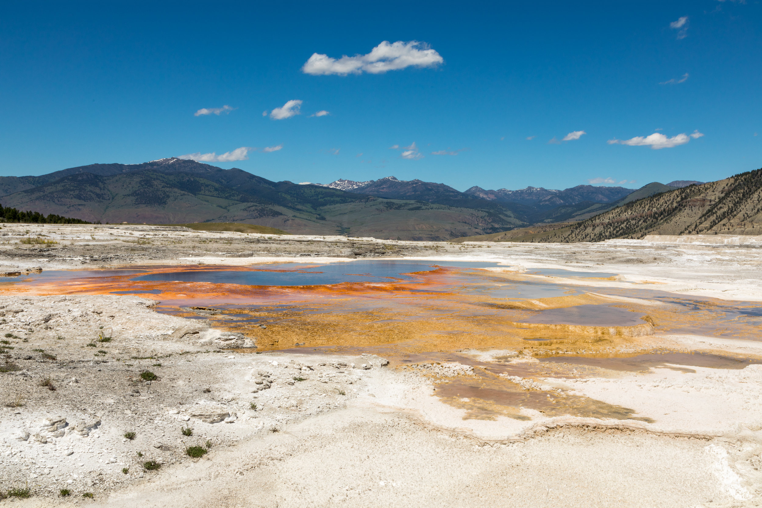 Mammoth Hot Springs, Yellowstone National Park, Image # 7391