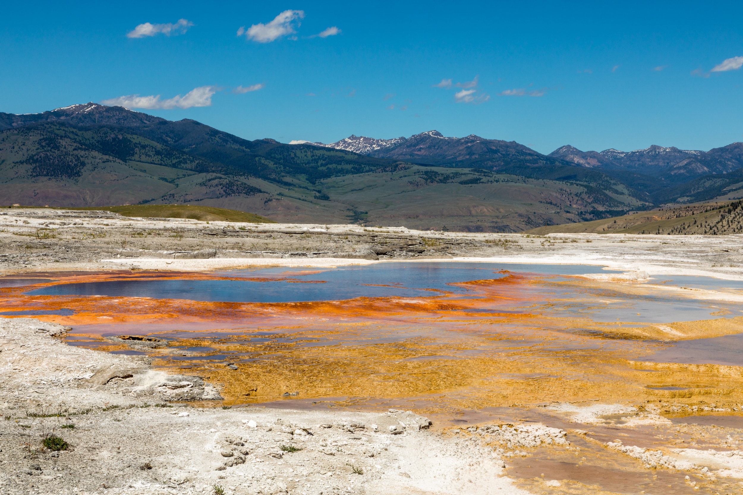 Mammoth Hot Springs, Yellowstone National Park, Image # 7393