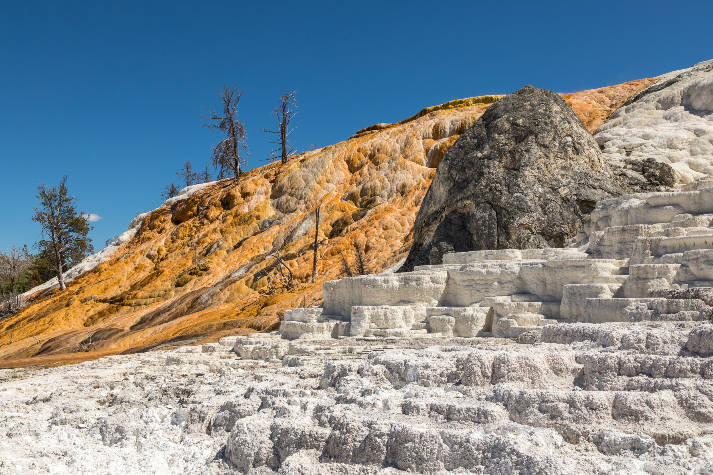Mammoth Hot Springs, Yellowstone National Park, Image # 7549