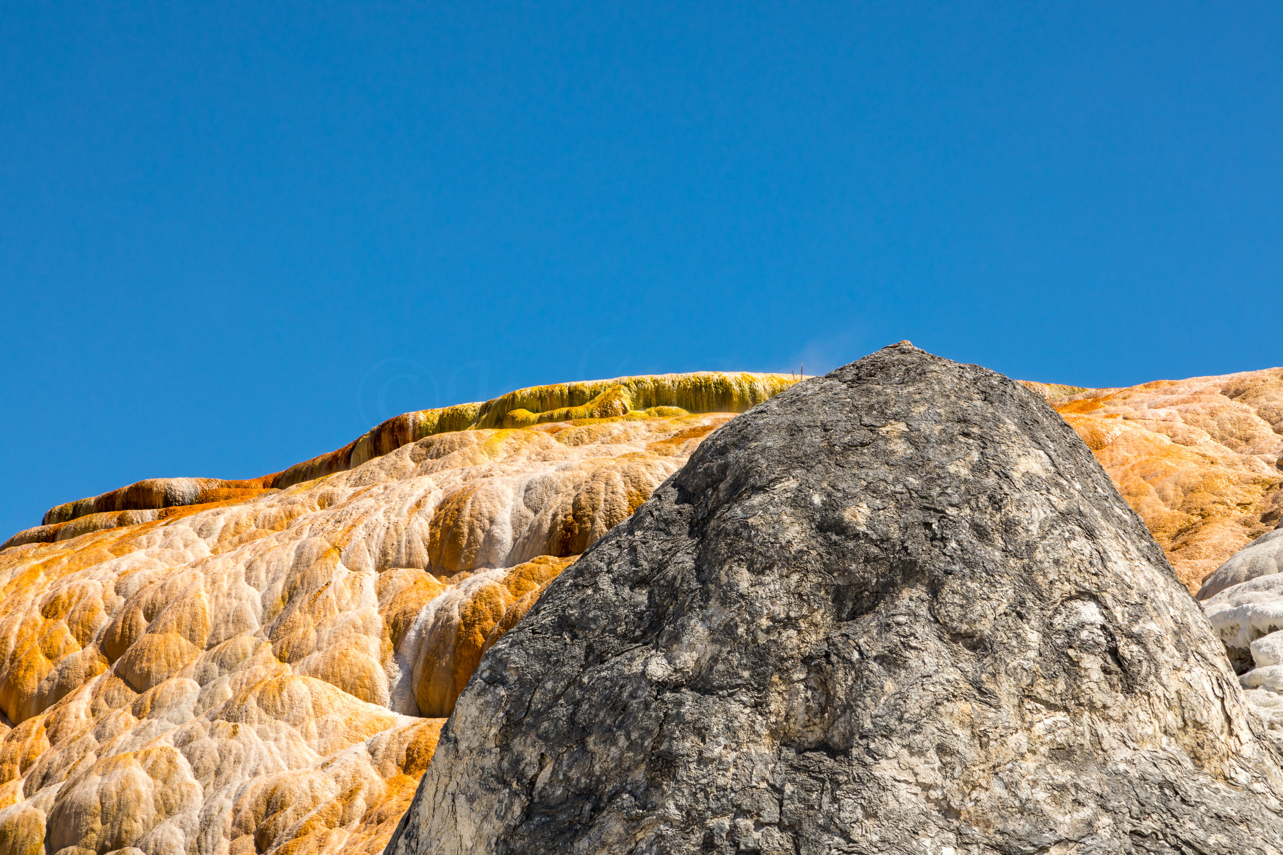 Mammoth Hot Springs, Yellowstone National Park, Image # 7559