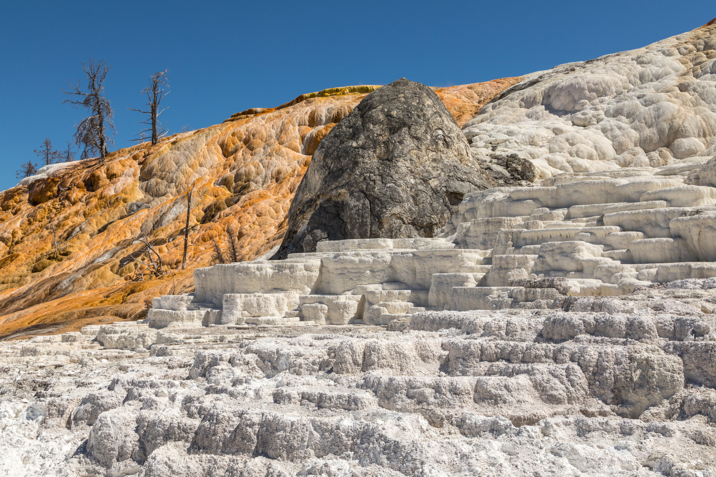 Mammoth Hot Springs, Yellowstone National Park, Image # 7477