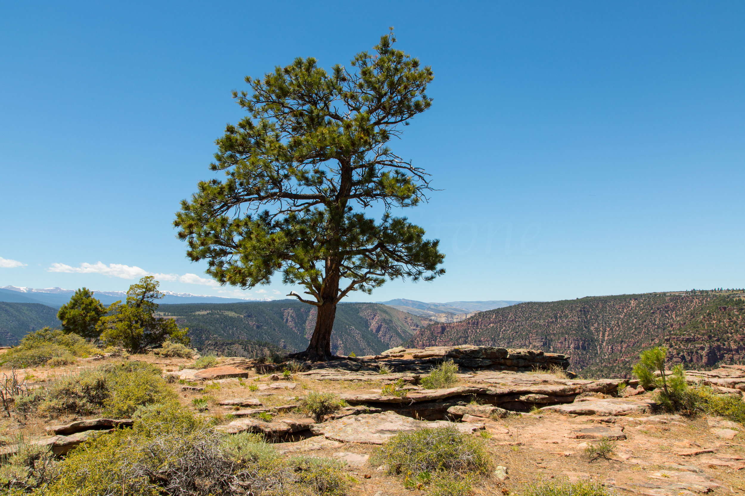 Flaming Gorge National Recreational Area, Image # 8949