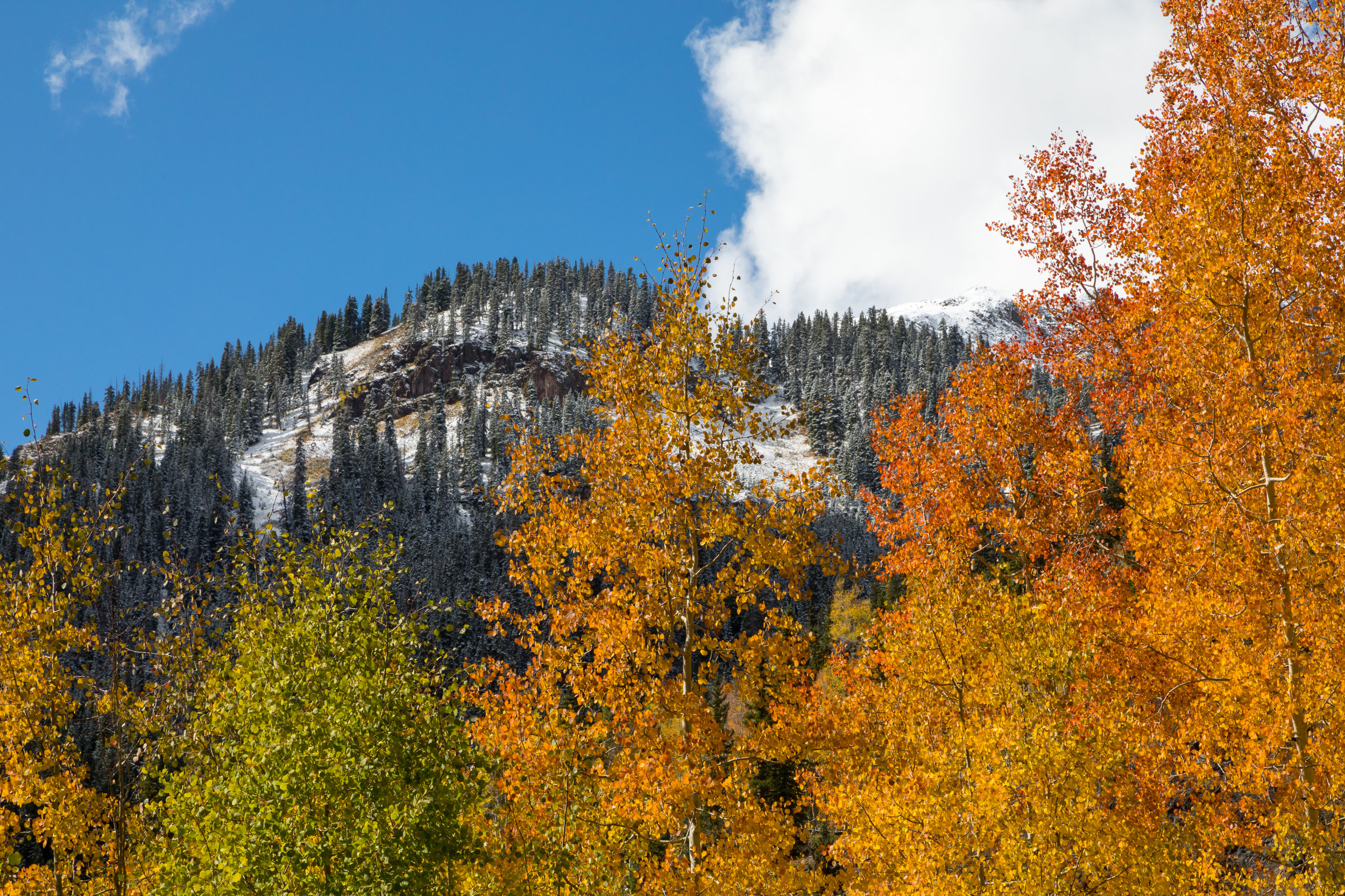 Red Mountain, Image # 4547