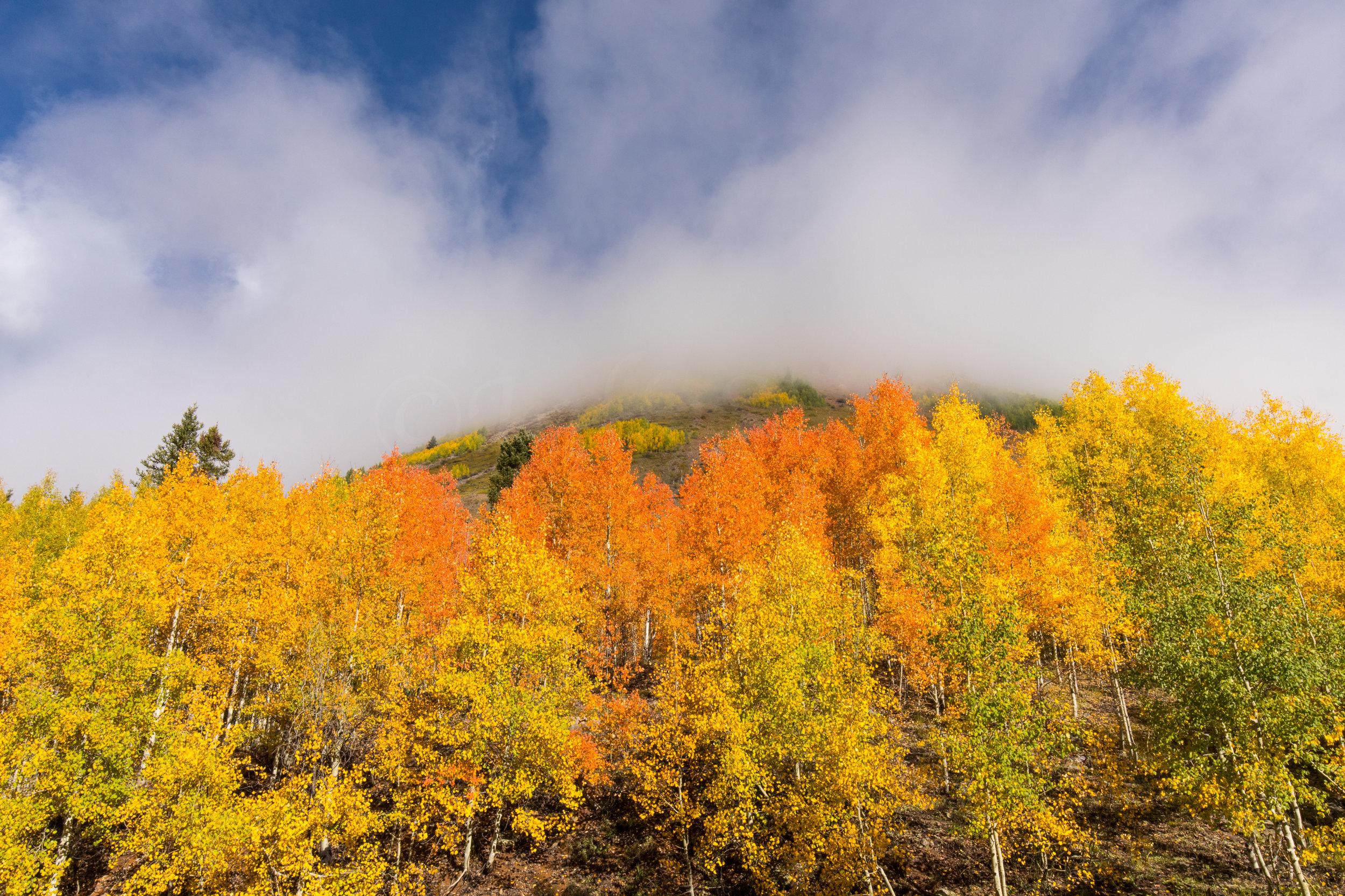 Silverton, Colorado, Image # 0761