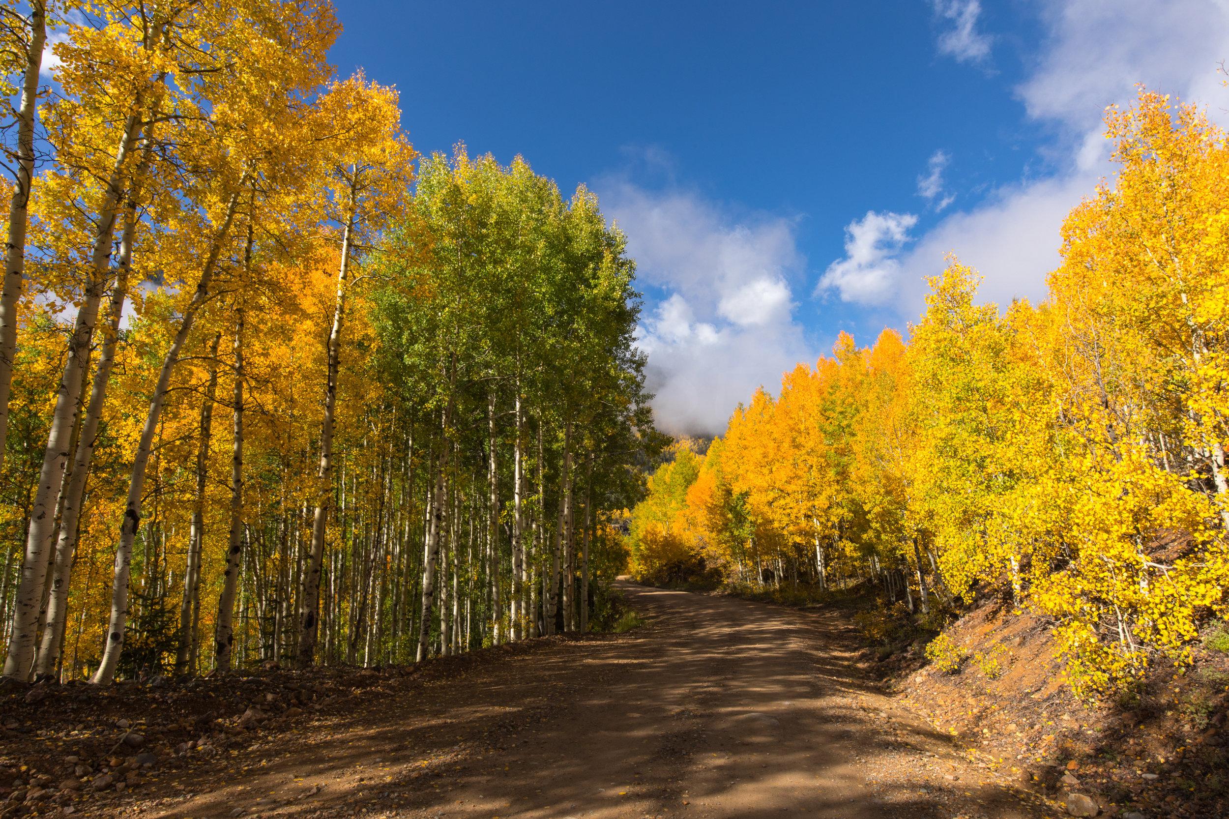 Silverton, Colorado, Image # 0766