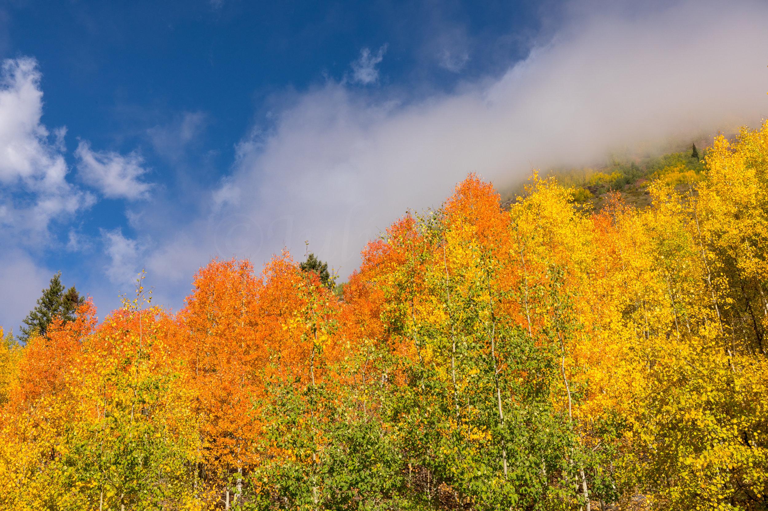 Silverton, Colorado, Image # 0778