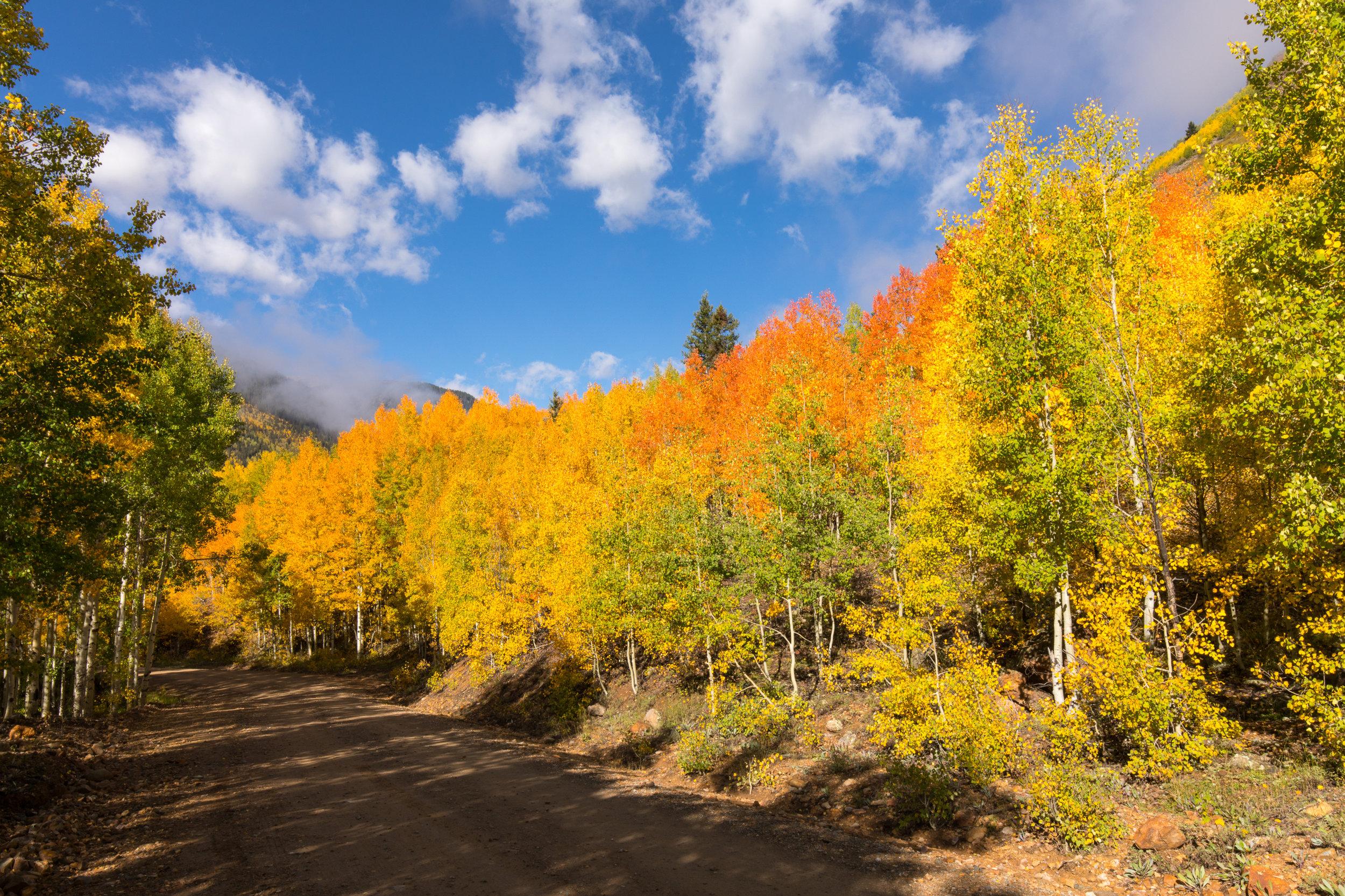 Silverton, Colorado, Image # 0783