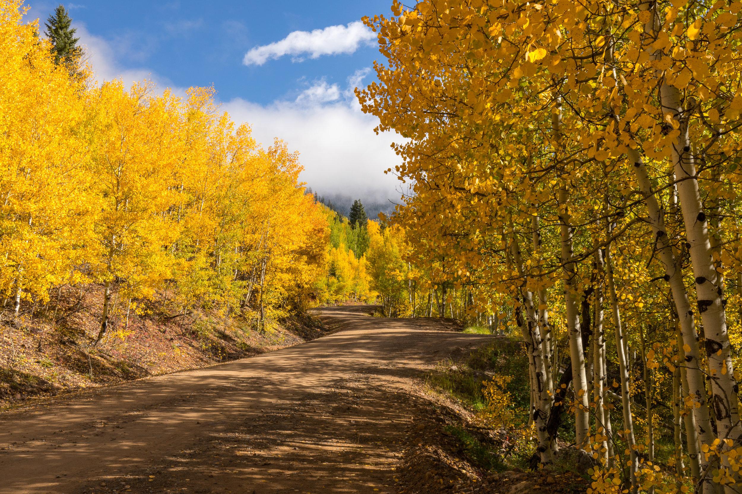 Silverton, Colorado, Image # 0804