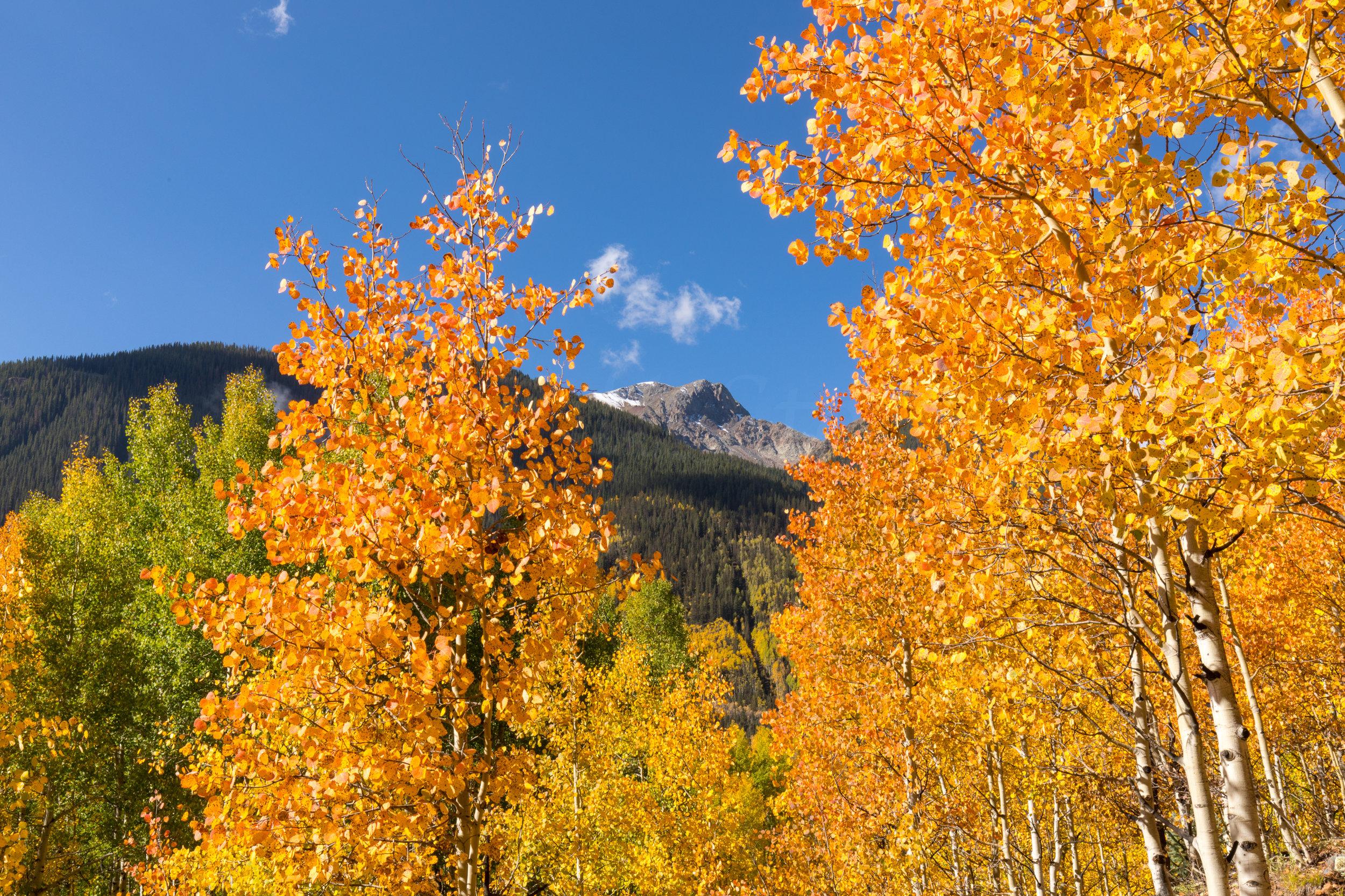 Silverton, Colorado, Image # 0824