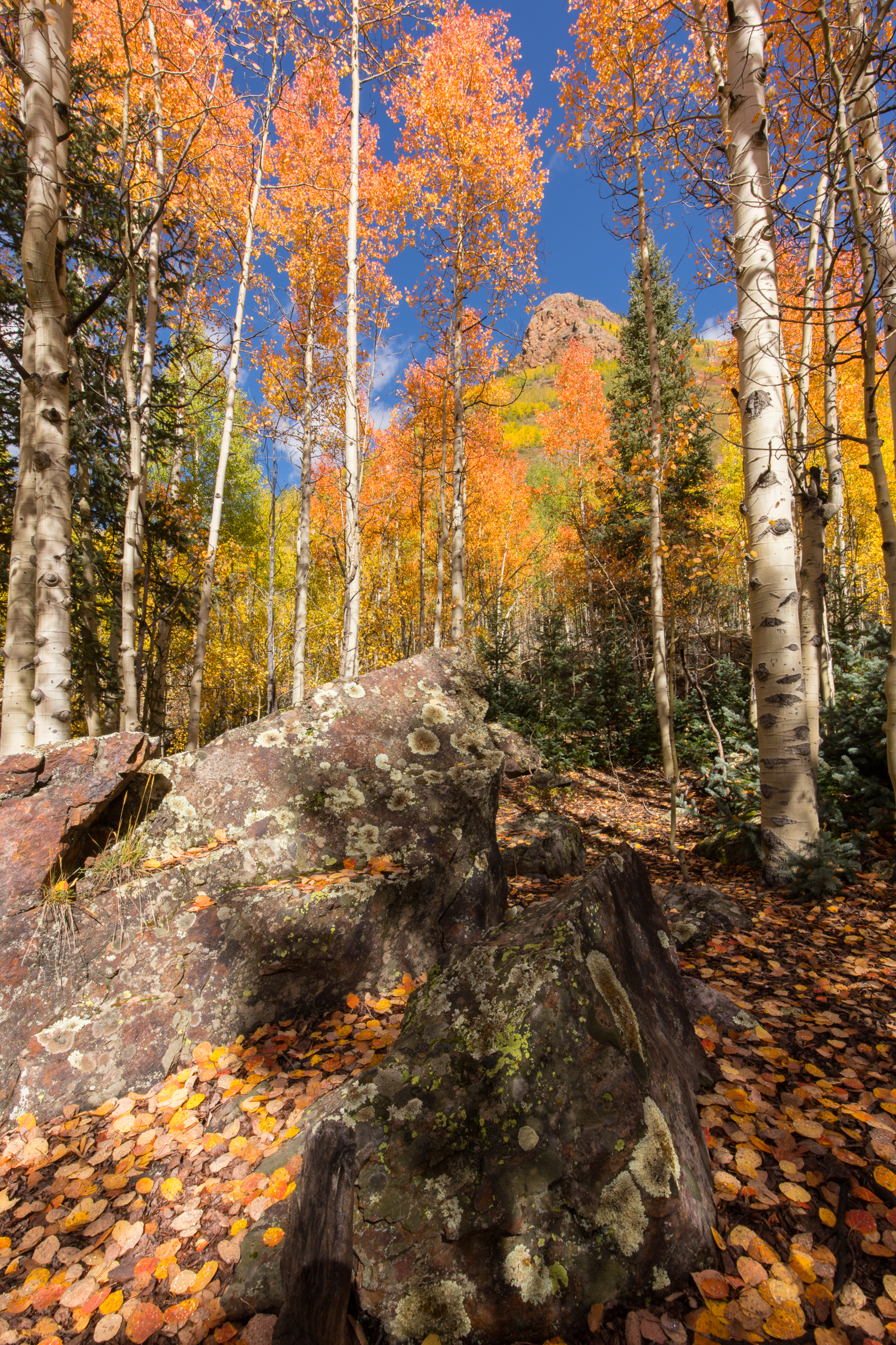 Silverton, Colorado, Image # 0926