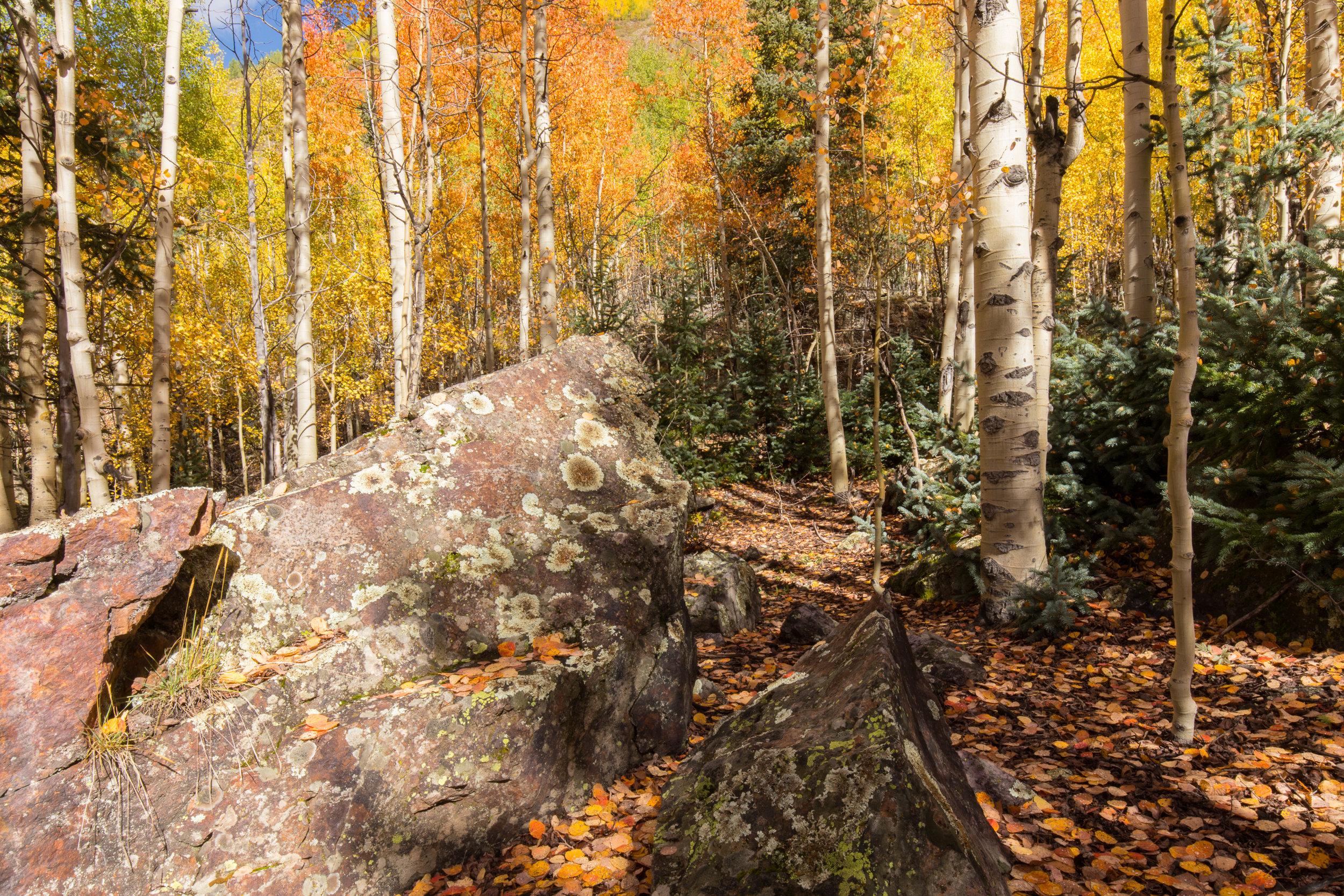 Silverton, Colorado, Image # 0937