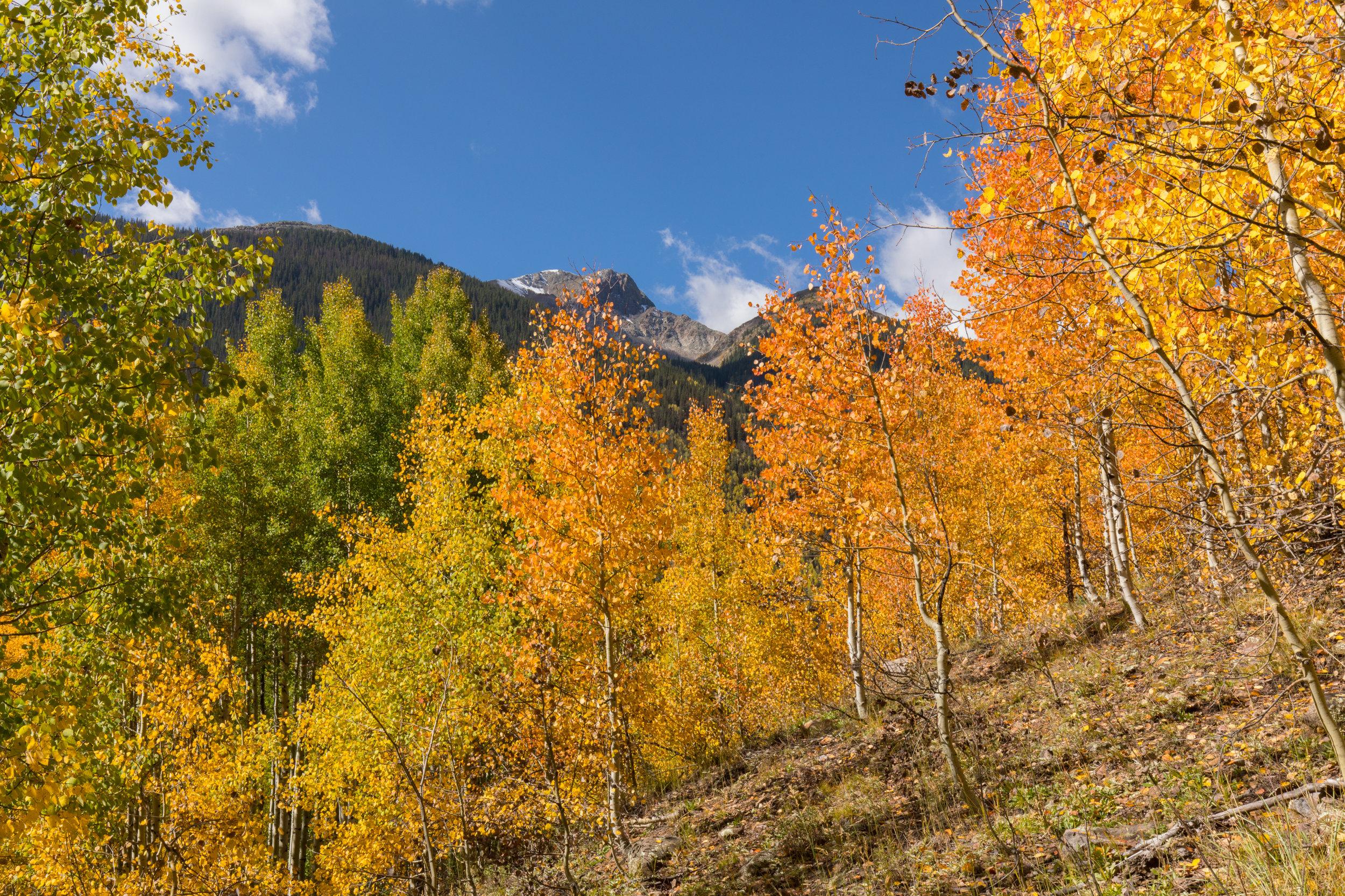 Silverton, Colorado, Image # 0944