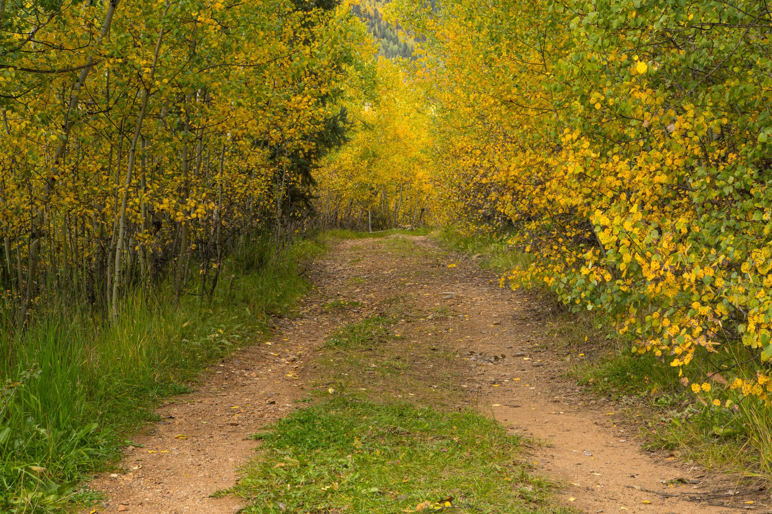 Silverton, Colorado, Image # 9513
