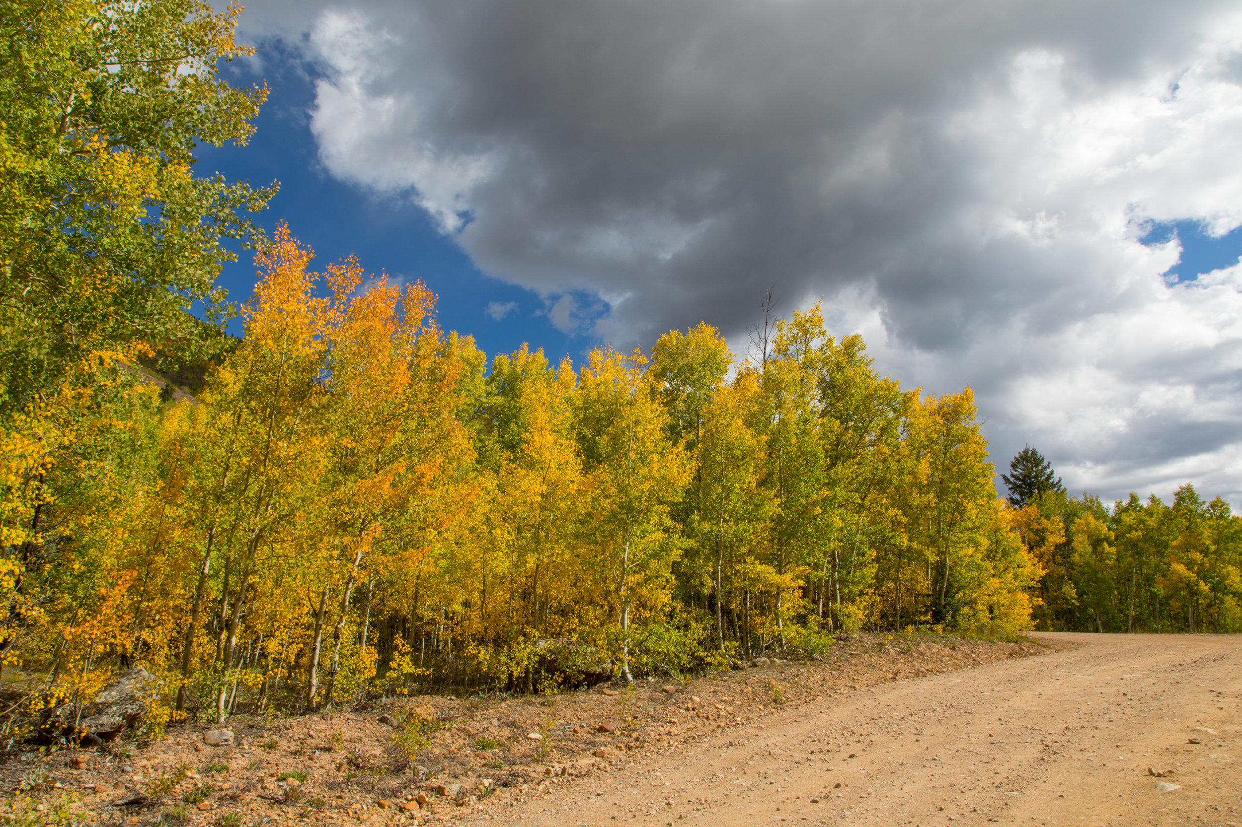 Silverton, Colorado, Image # 9710