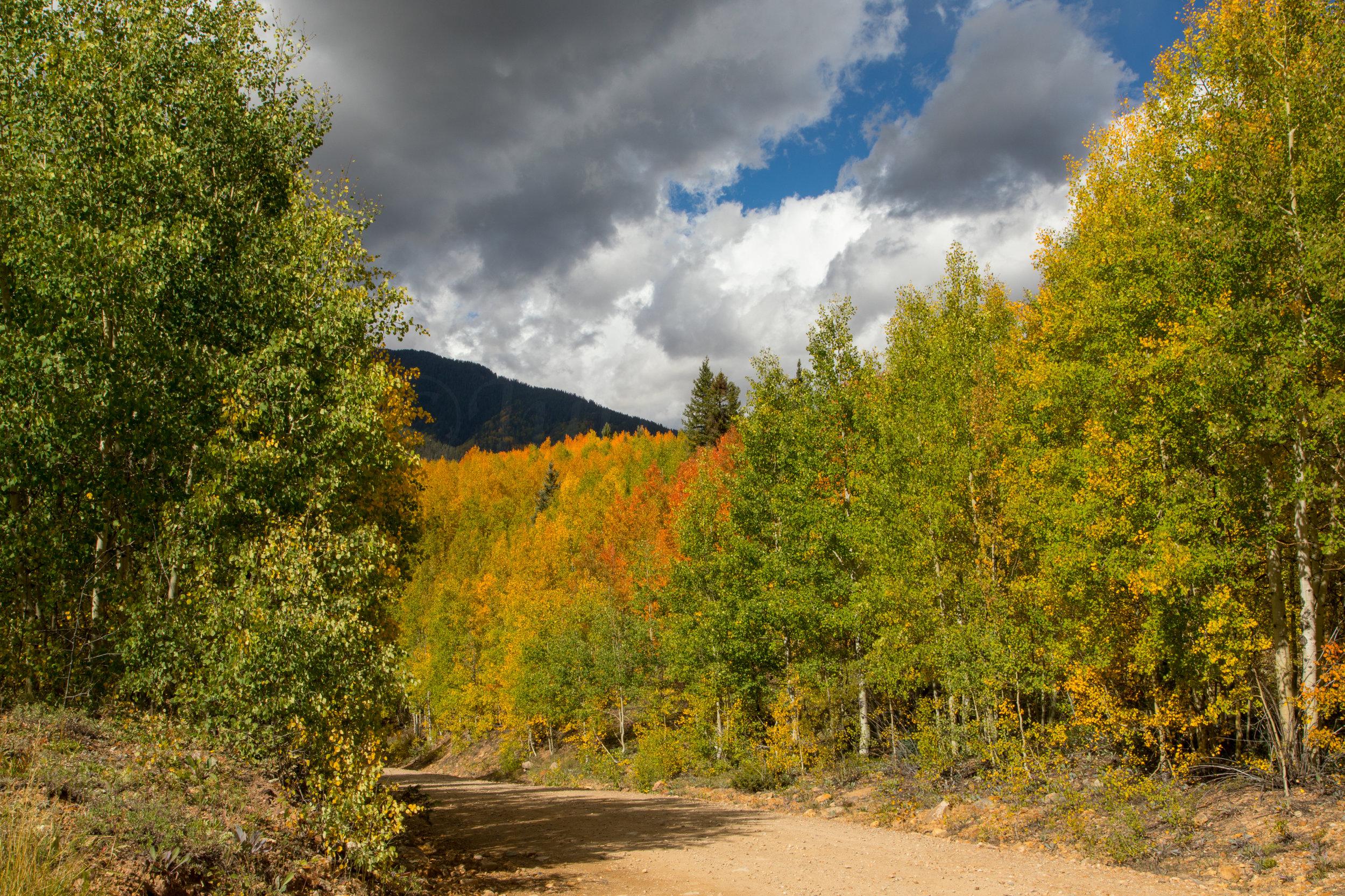 Silverton, Colorado, Image # 9675