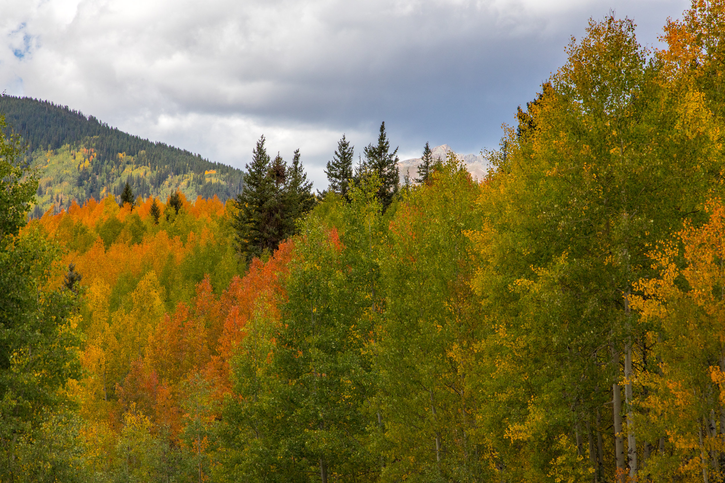 Silverton, Colorado, Image # 9950