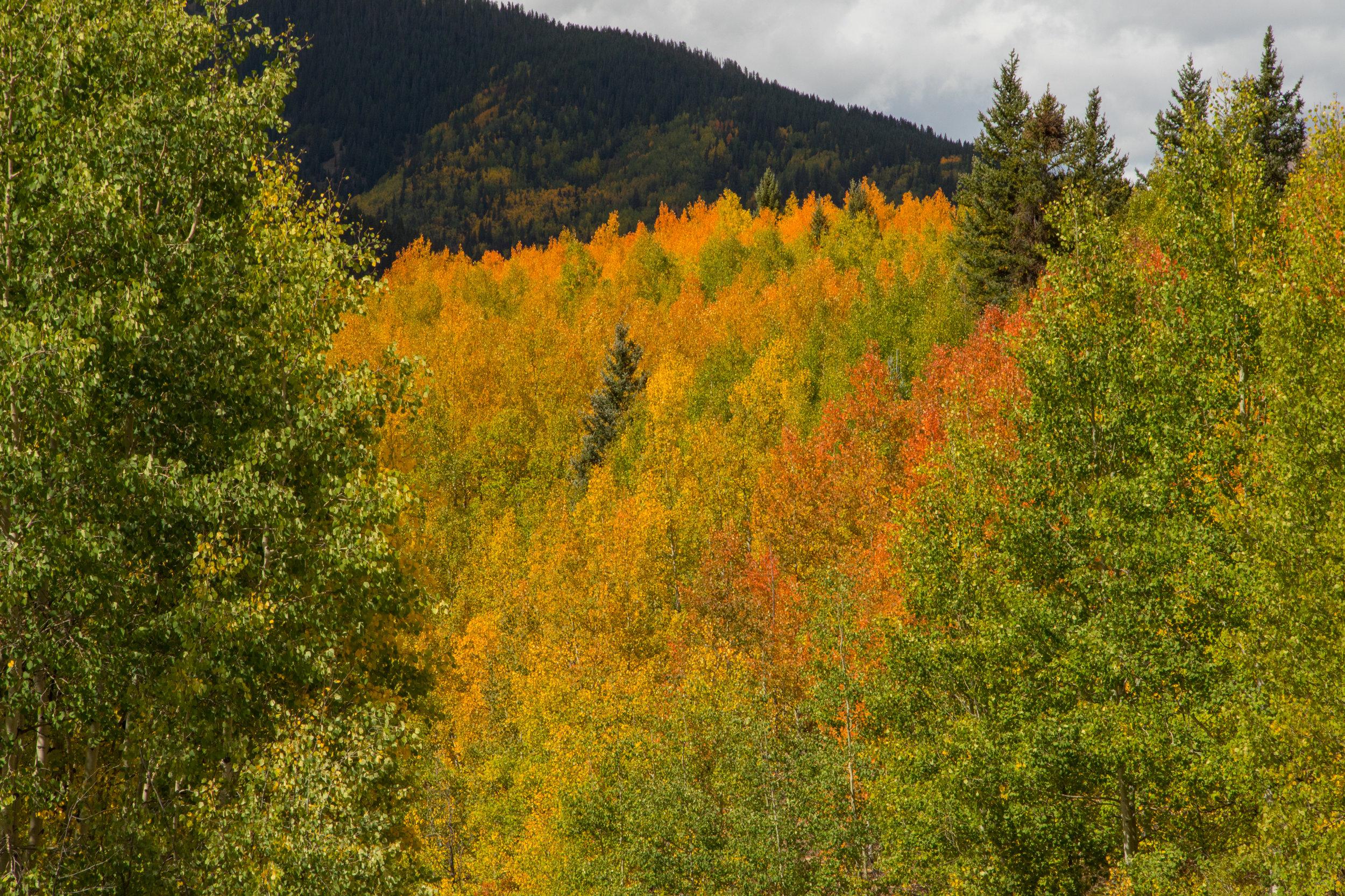 Silverton, Colorado, Image # 9990