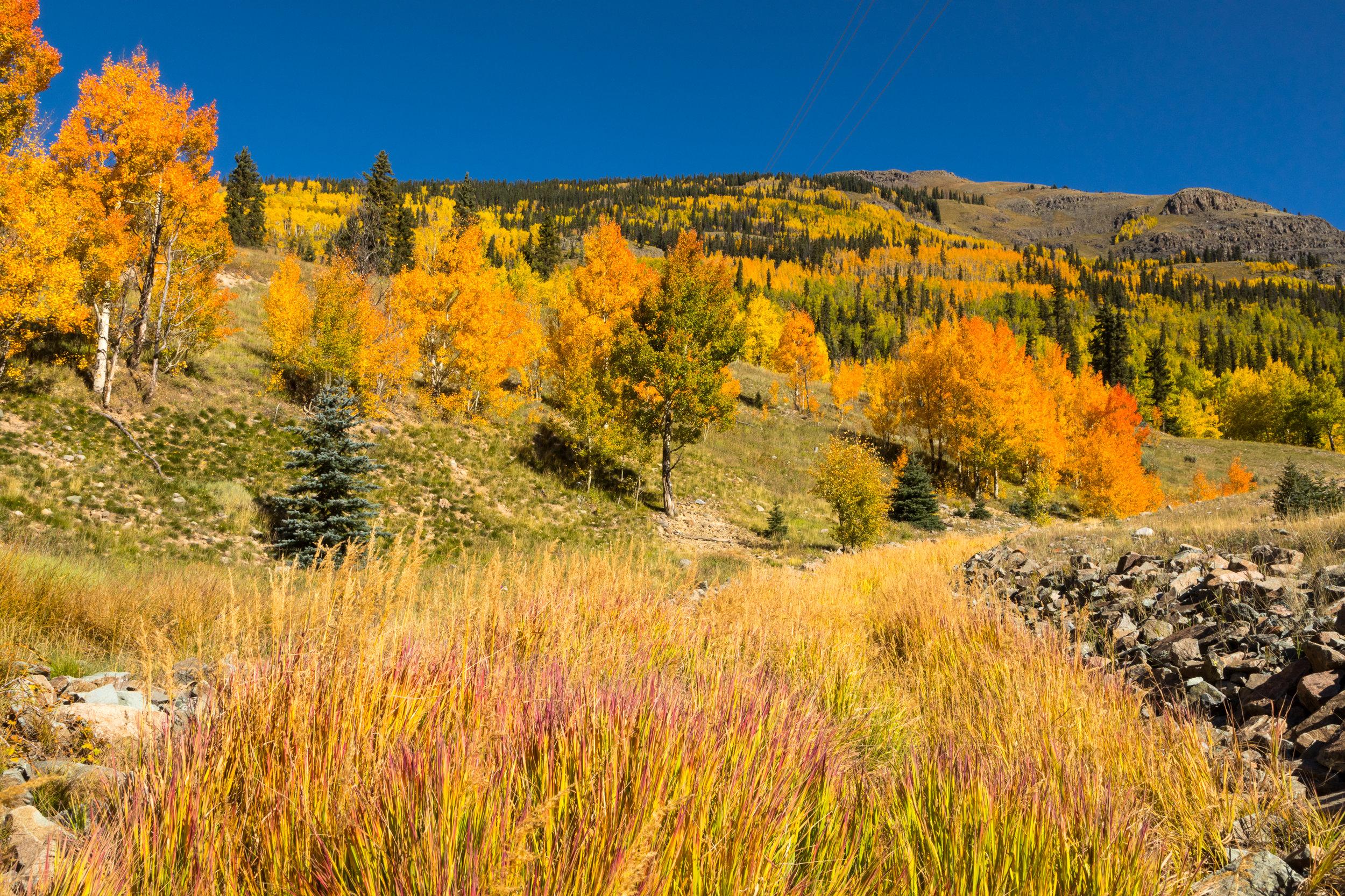 Silverton, Colorado, Image #3289