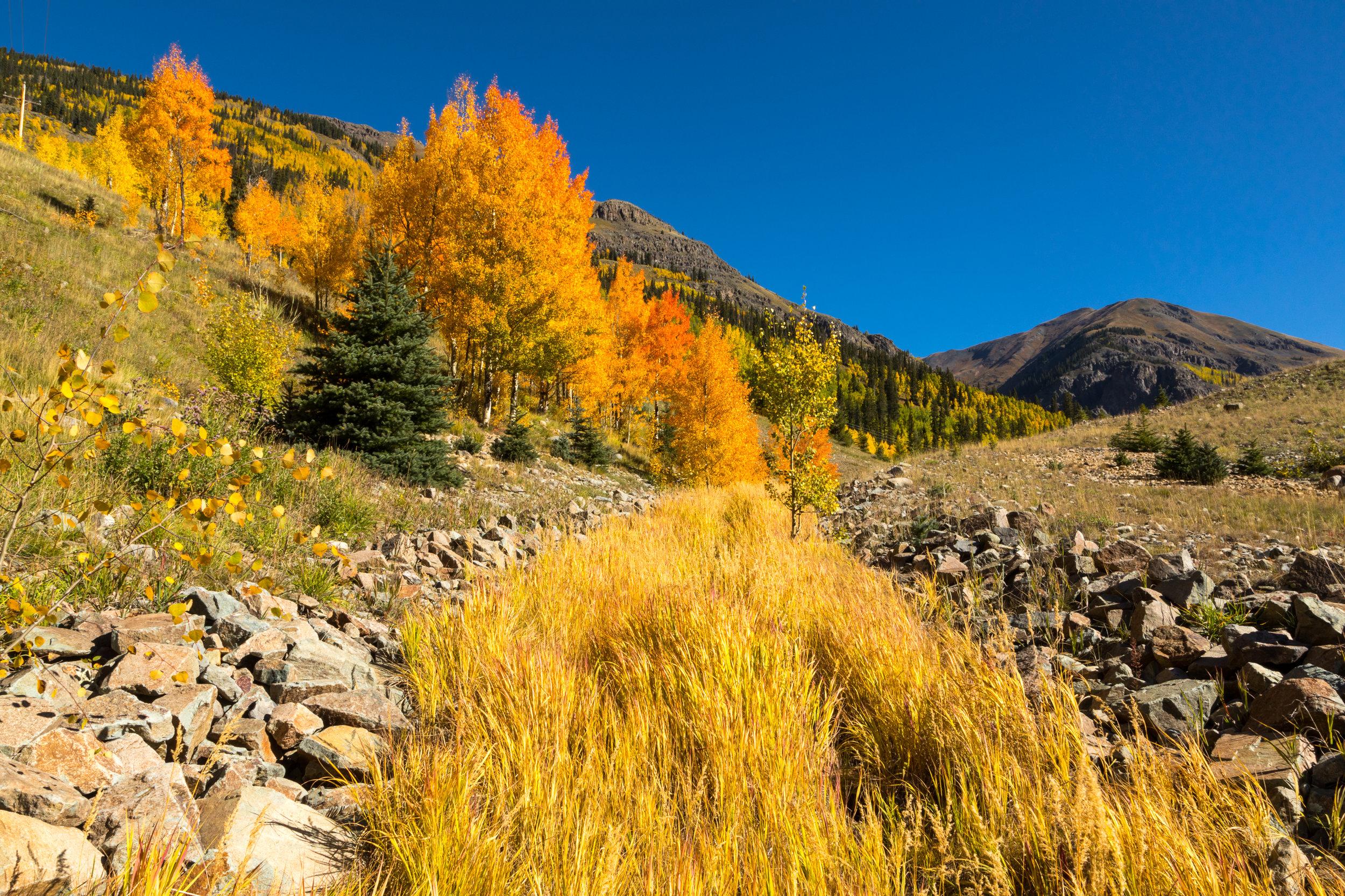 Silverton, Colorado, Image #3297