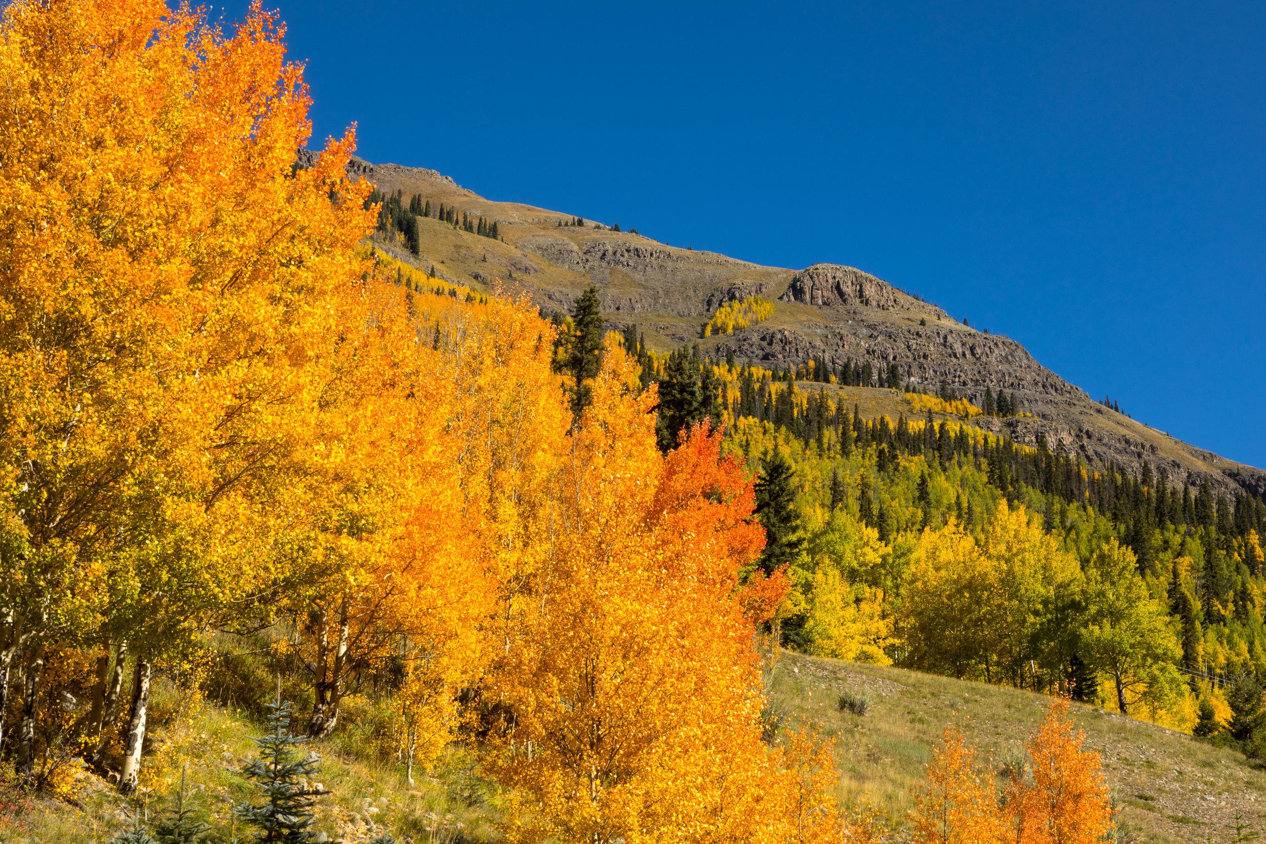 Silverton, Colorado, Image #3317
