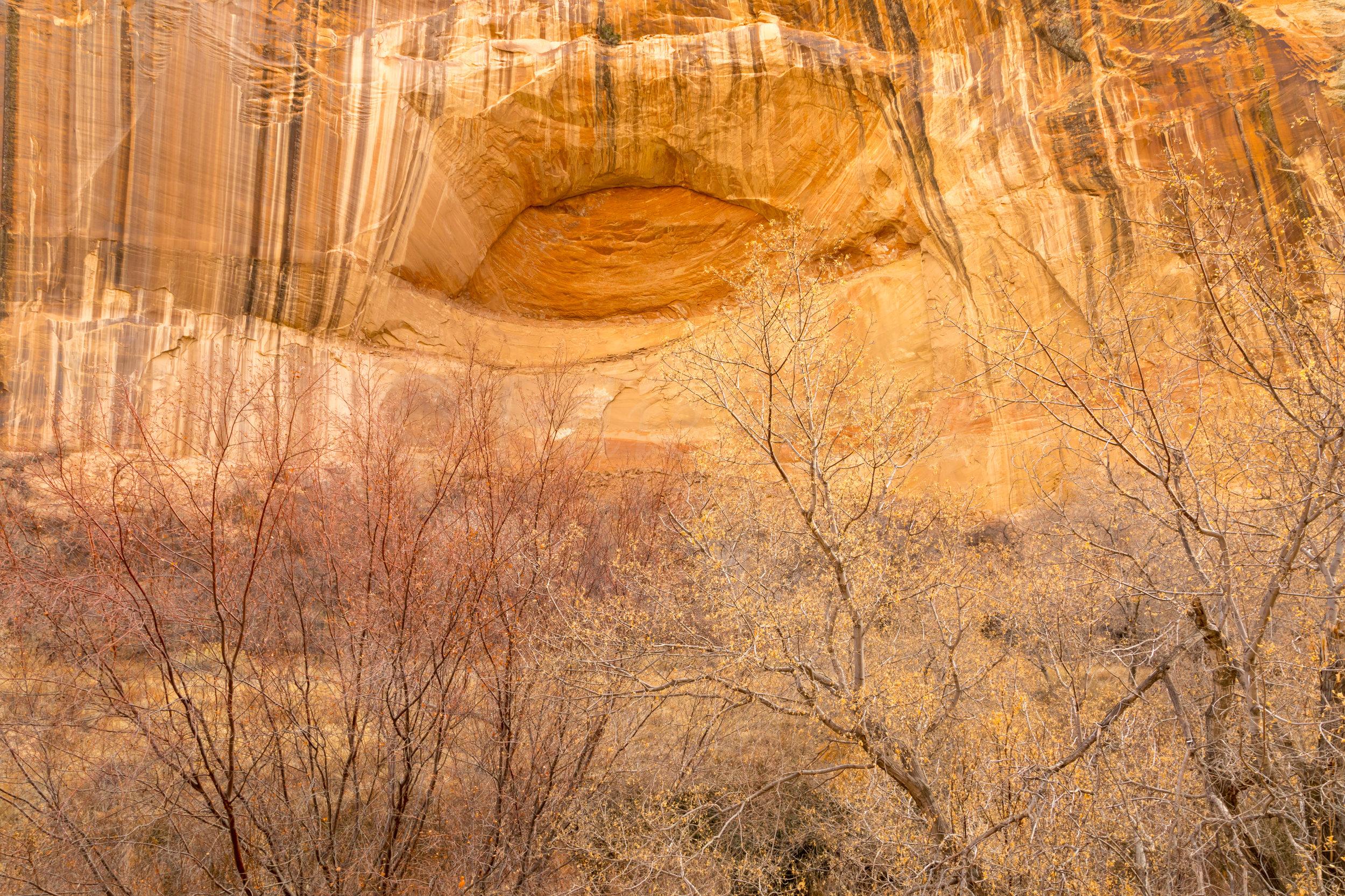 Lower Calf Creek Falls, Image # 3193