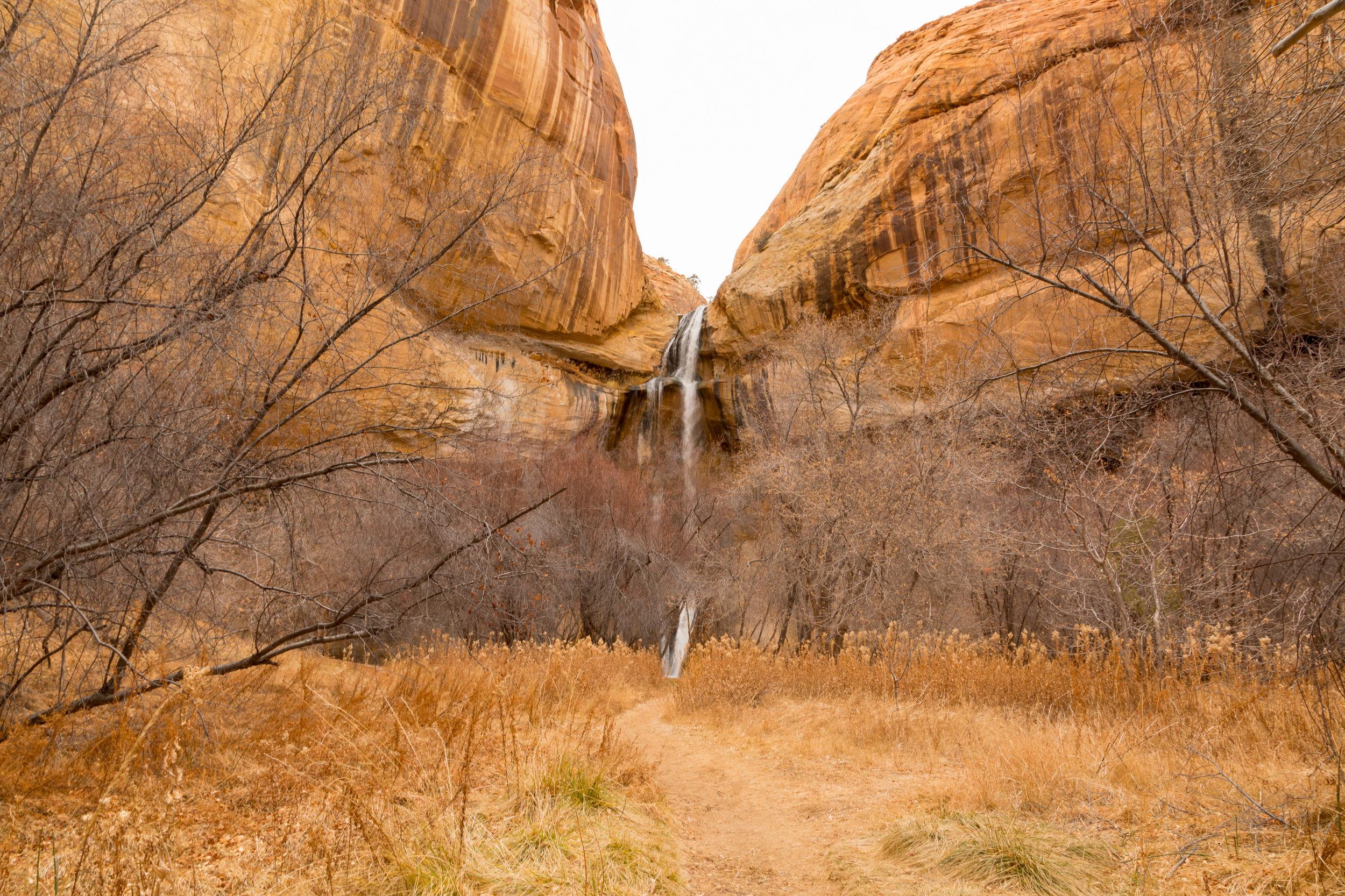 Lower Calf Creek Falls, Image # 3787