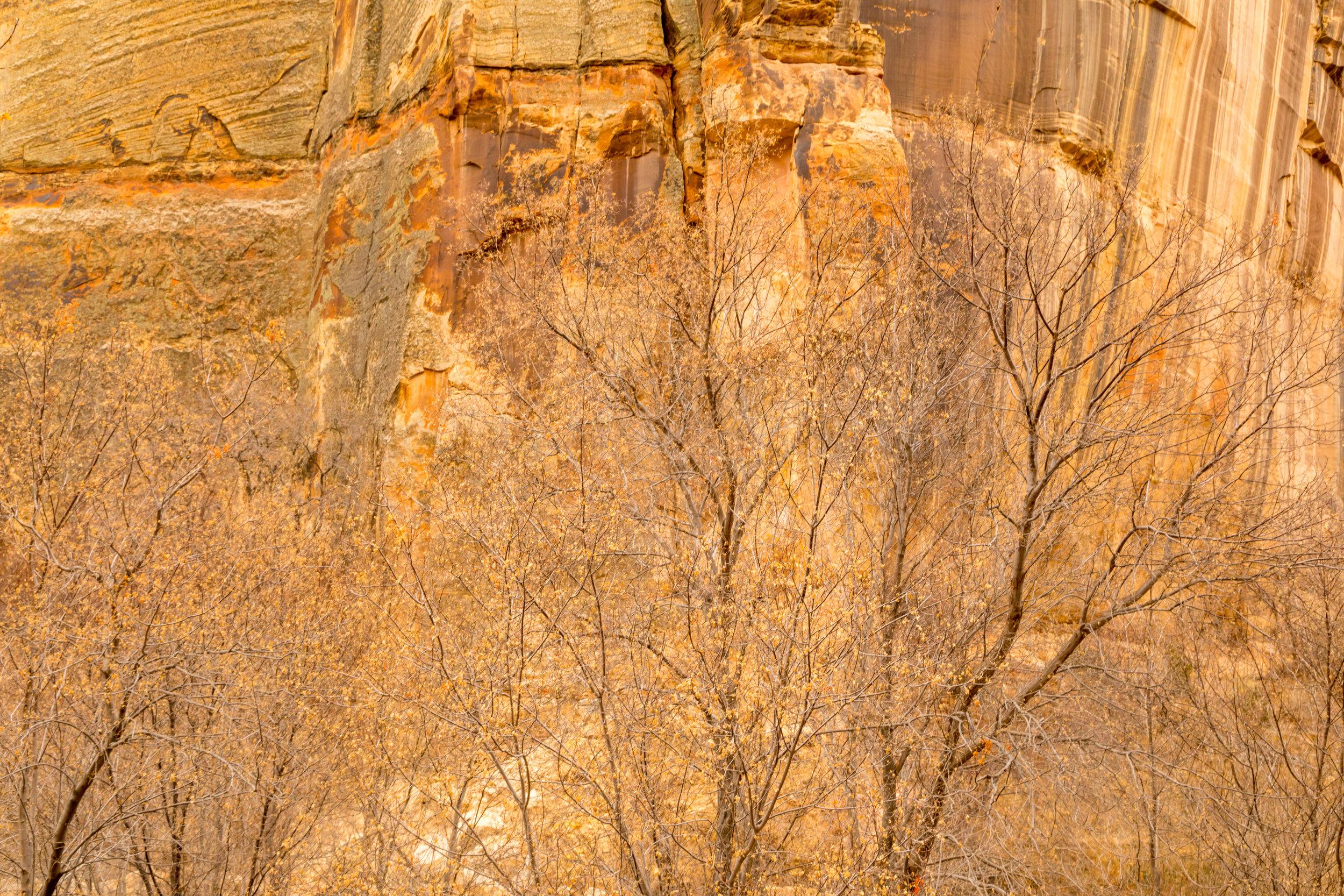 Lower Calf Creek Falls, Image # 3889