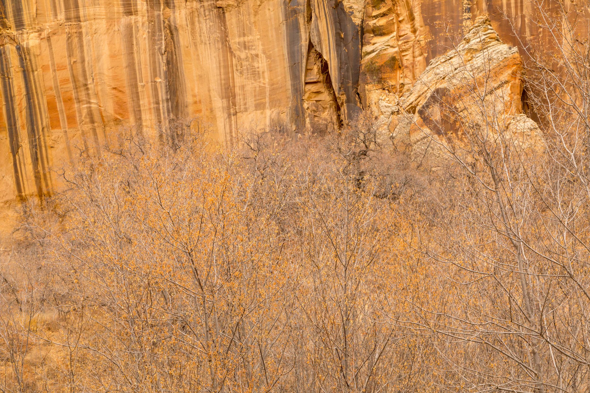 Lower Calf Creek Falls, Image # 3931