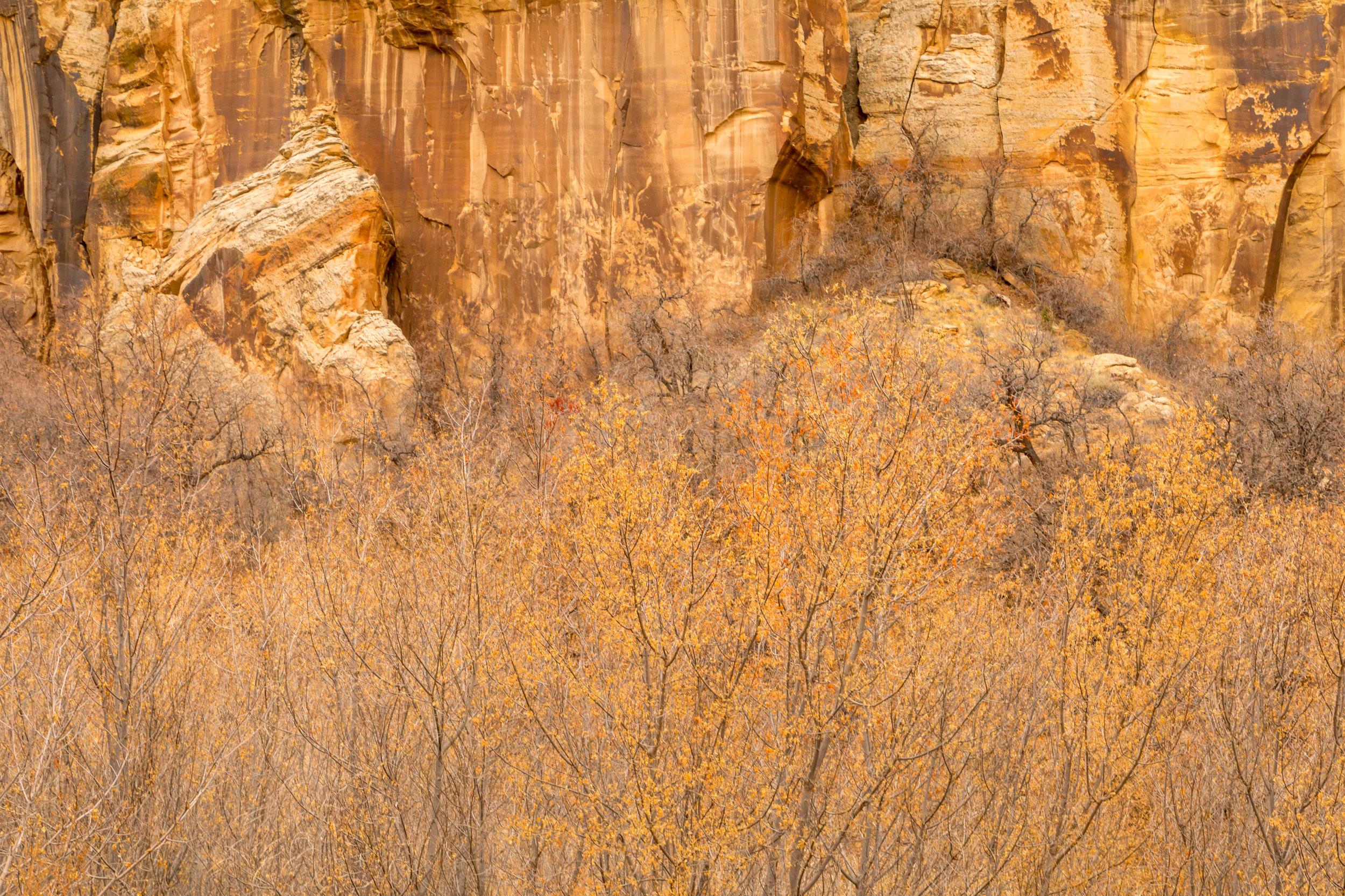 Lower Calf Creek Falls, Image # 3933