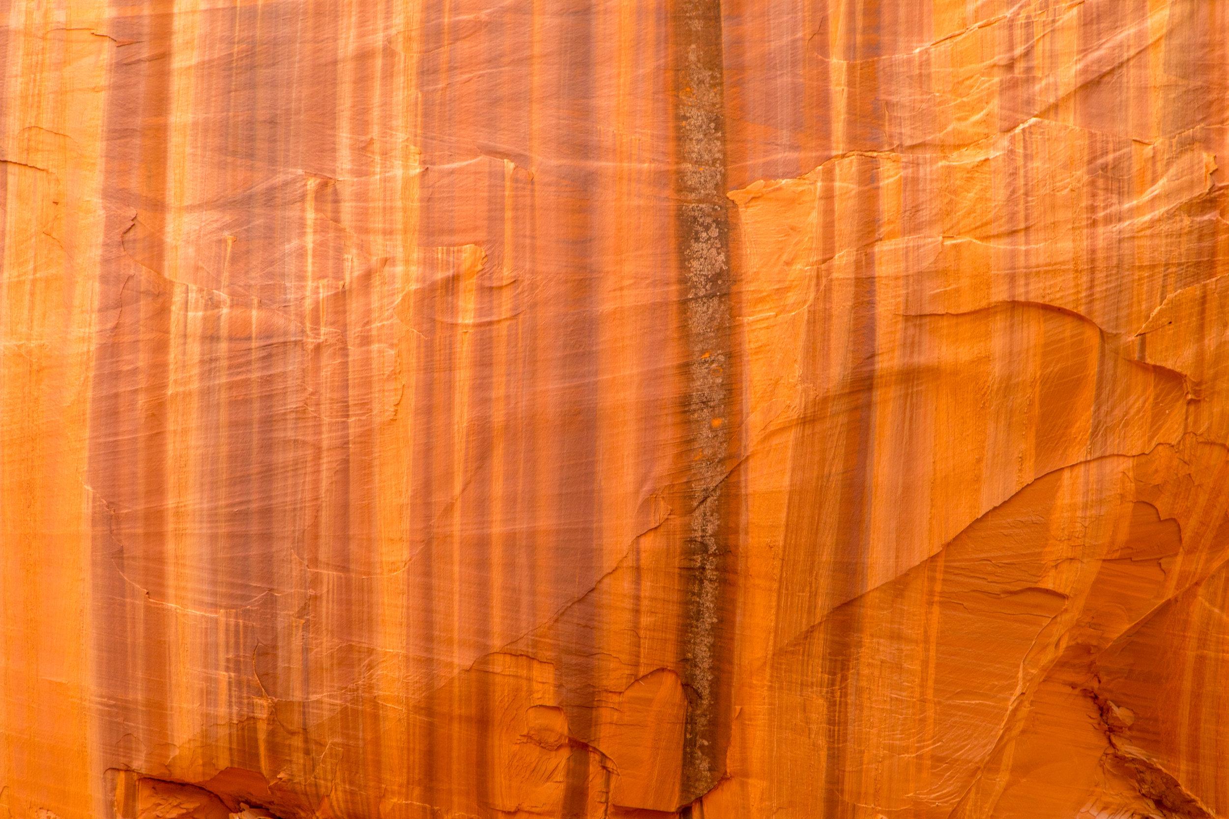 Burr Trail, Image # 4197
