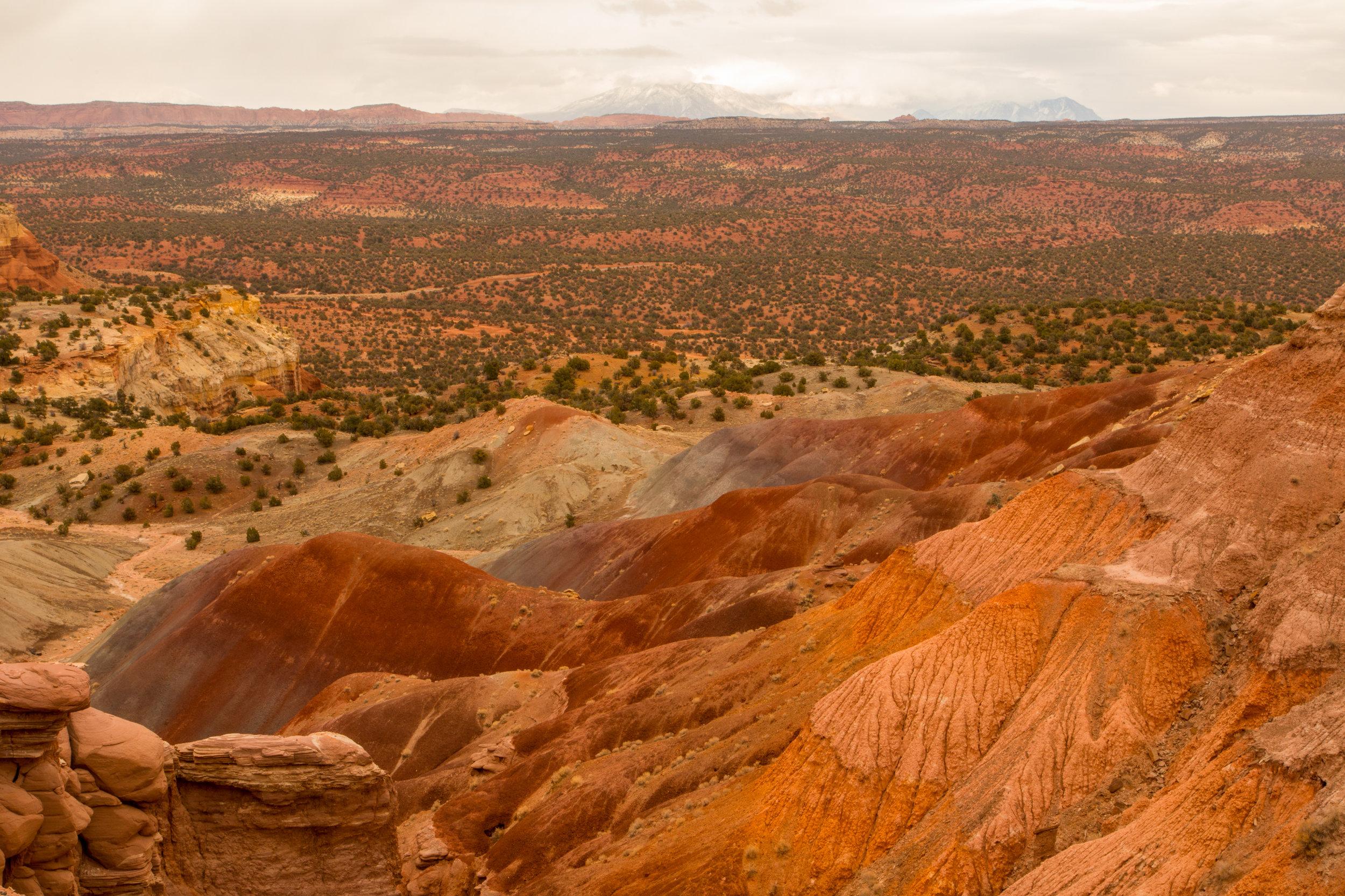 Burr Trail, Image # 4258