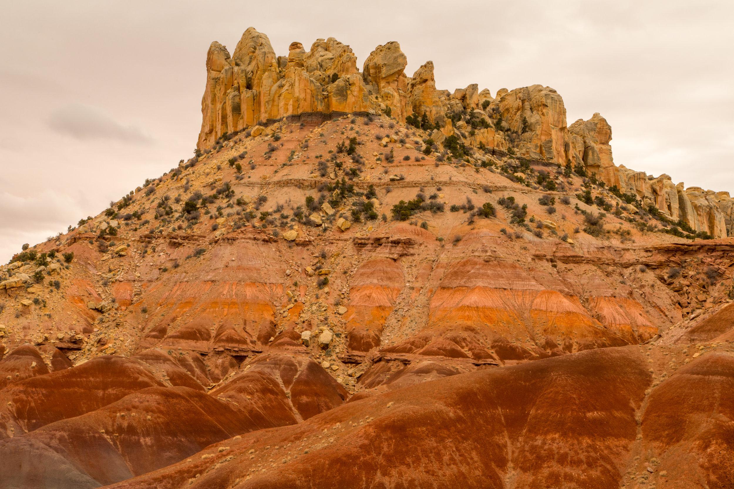 Burr Trail, Image # 4327