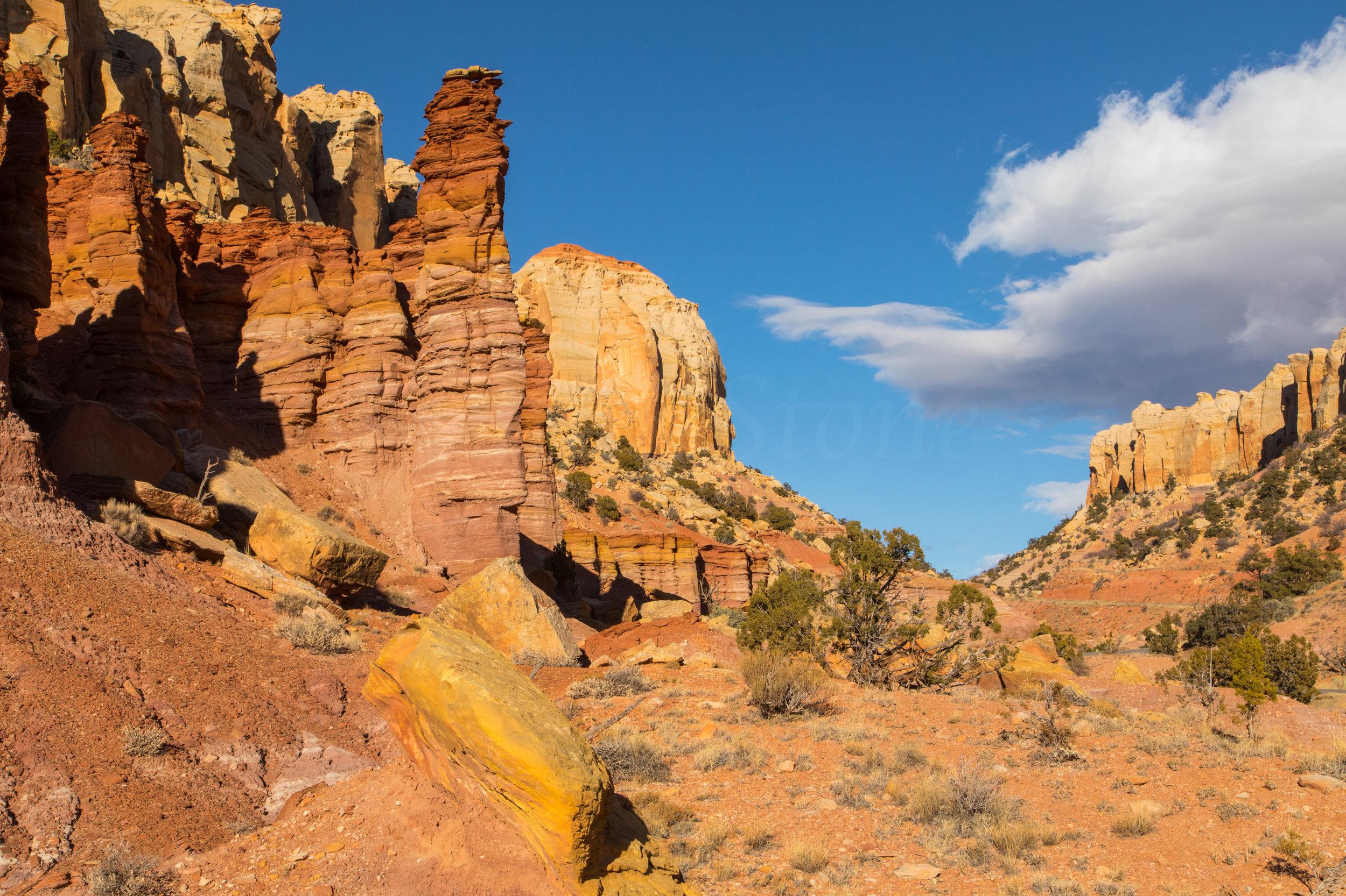 Burr Trail, Image # 4375