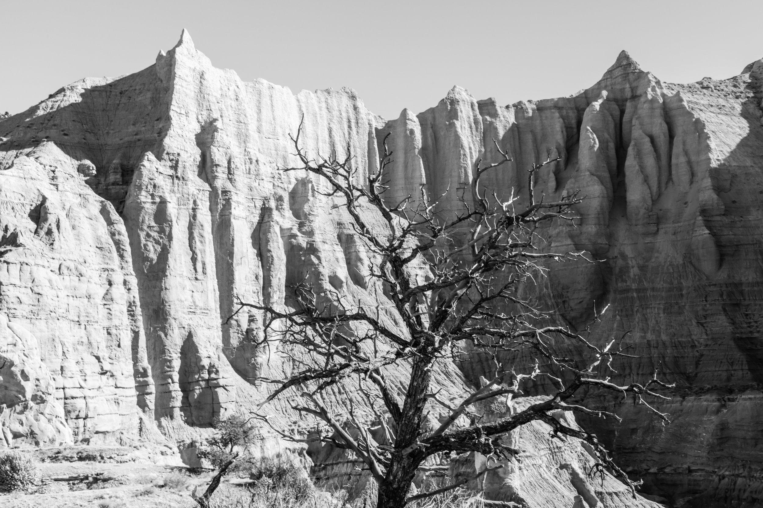 Kodachrome Basin State Park, Image # 4652