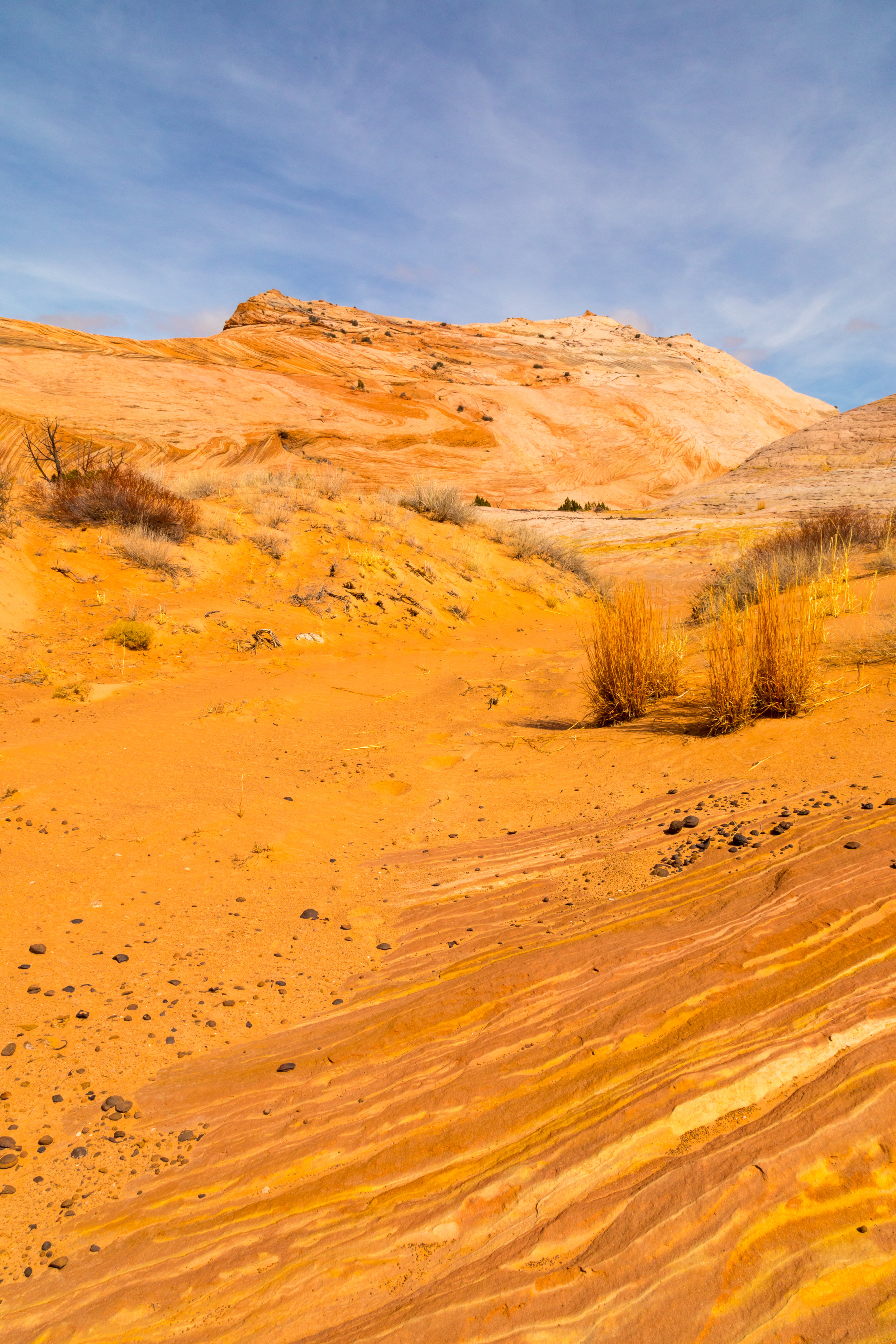 Escalante National Monument, Image # 6022