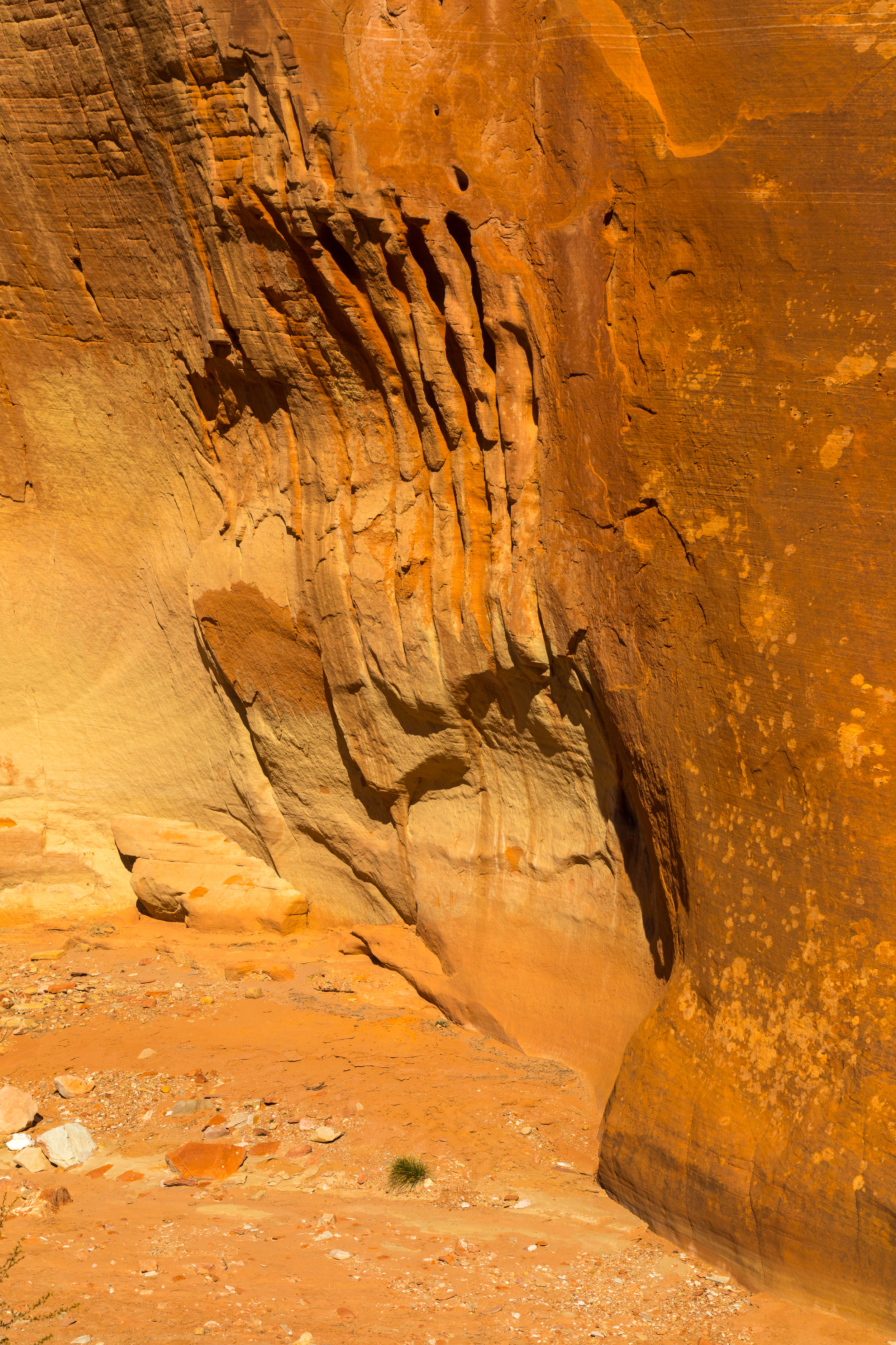Escalante National Monument, Image # 6652
