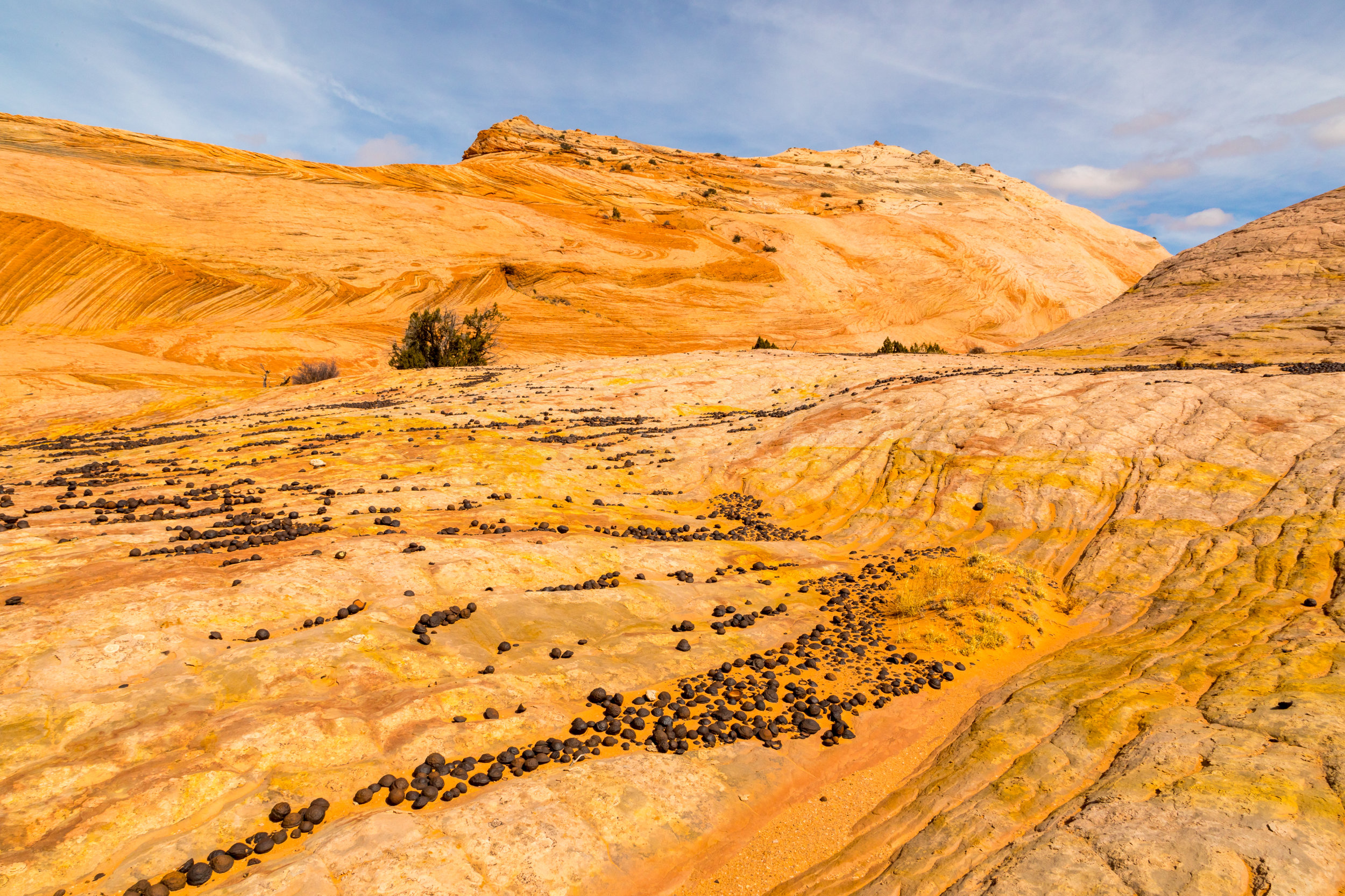 Escalante National Monument, Image # 5921